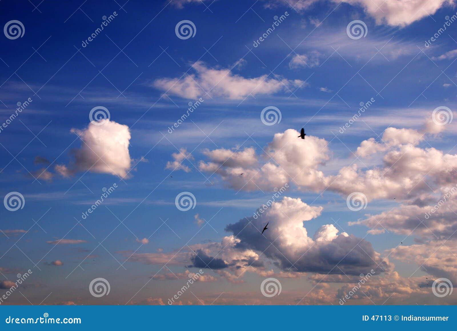 De achtergrond van de hemel