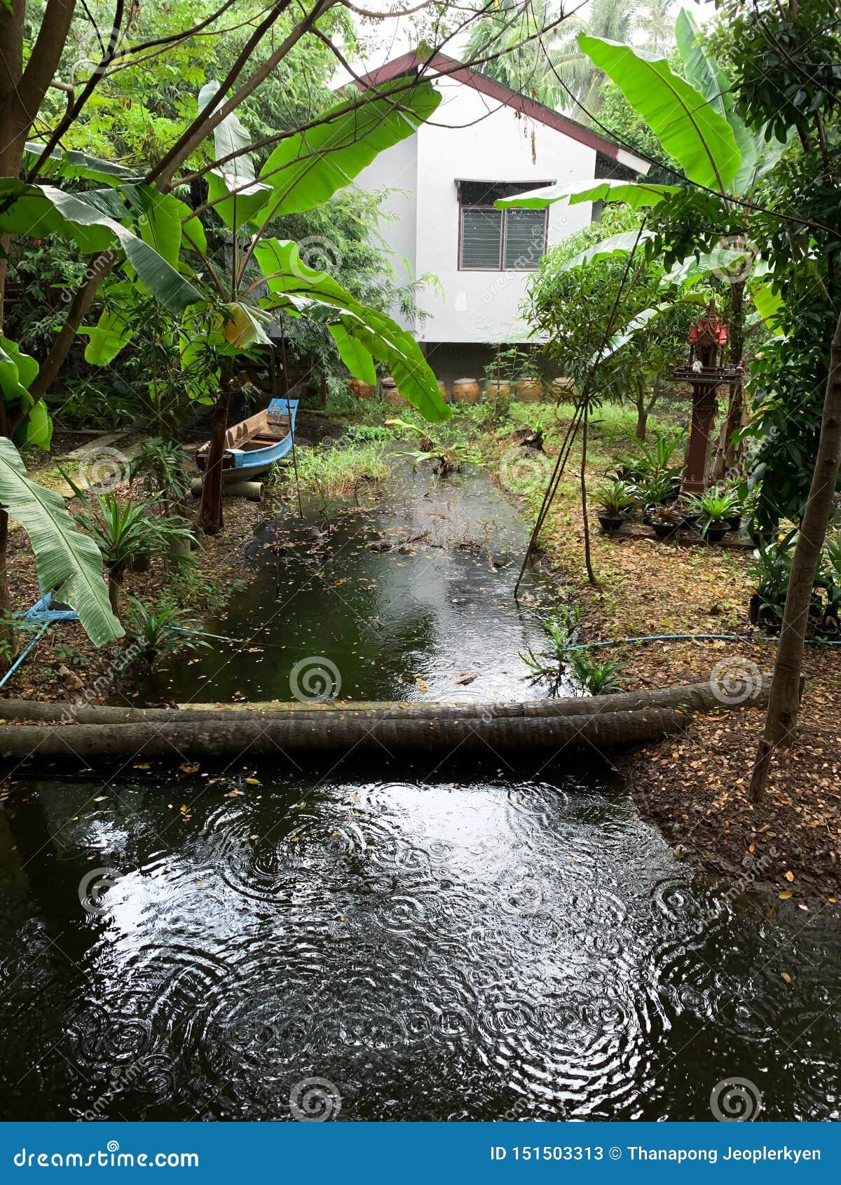 De achtergrond van het tuinhuis