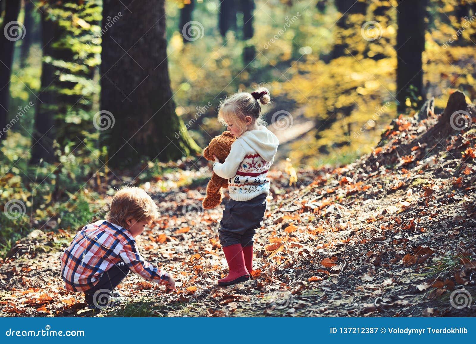 De actieve kinderen spelen spelen op verse lucht in de herfst bos Actieve rust en jonge geitjesactiviteit openlucht