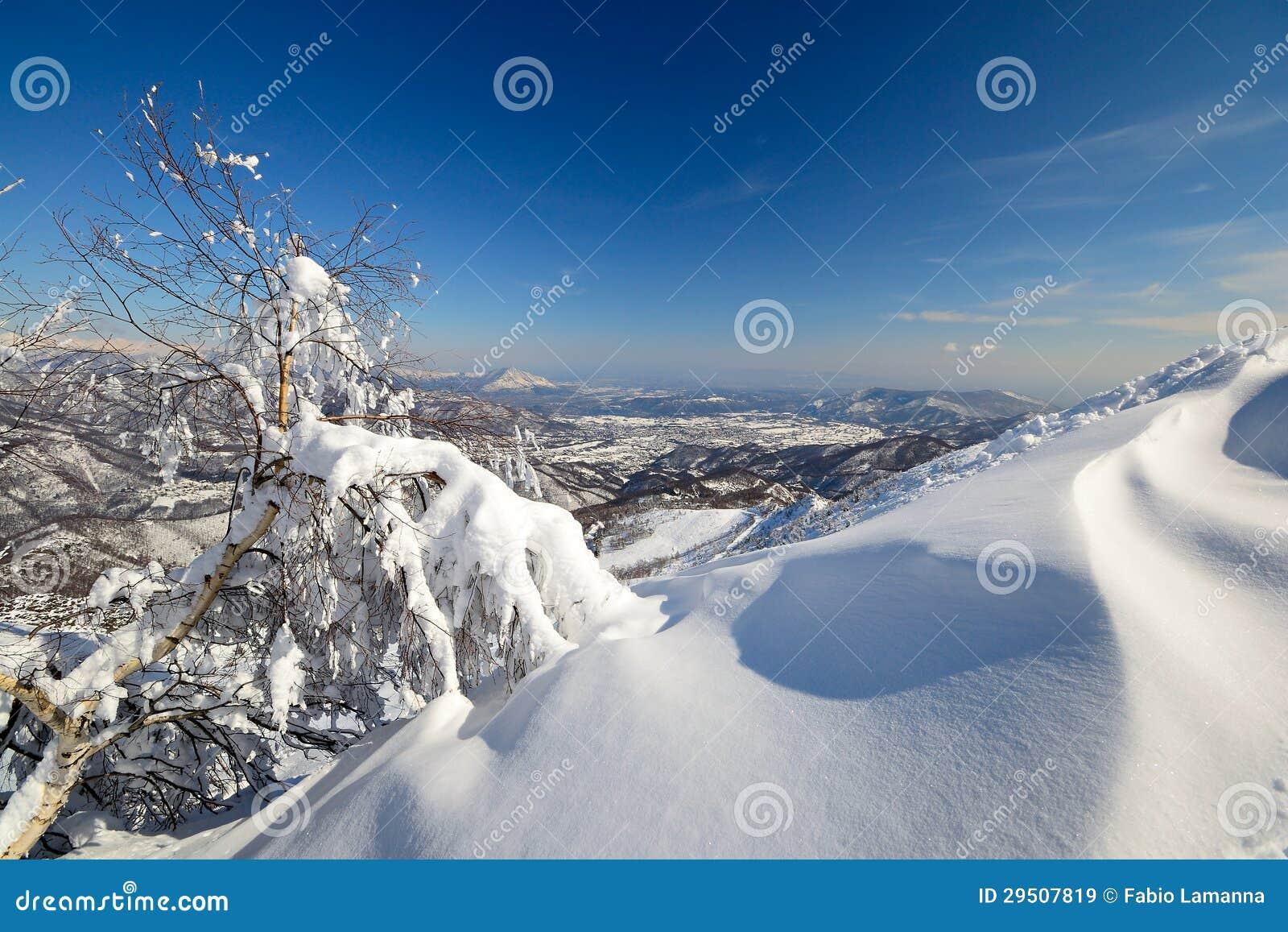 De alpiene scène van de winter