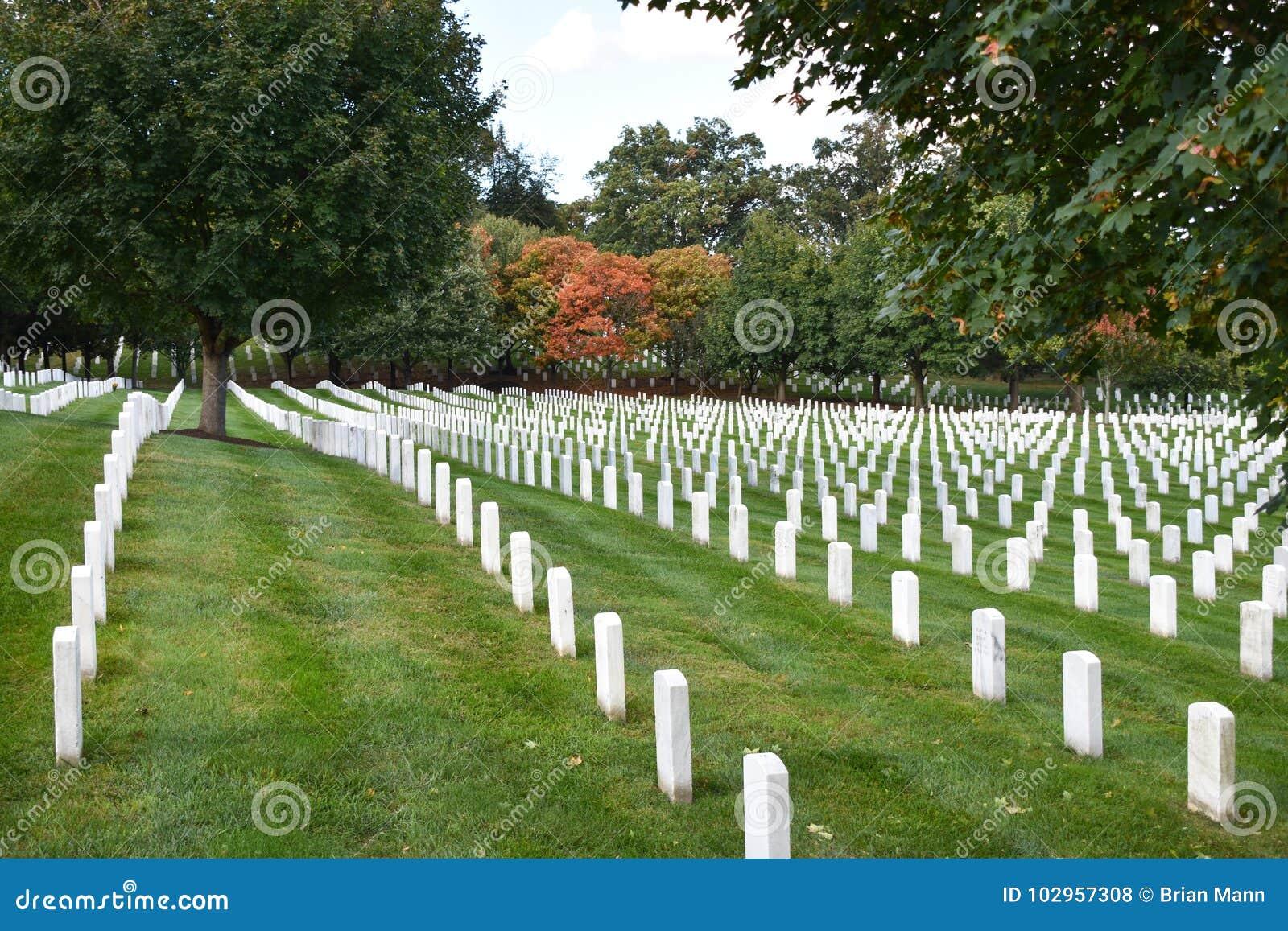 De Amerikaanse ernstige stenen van de militair witte steen in Nationale Arlington