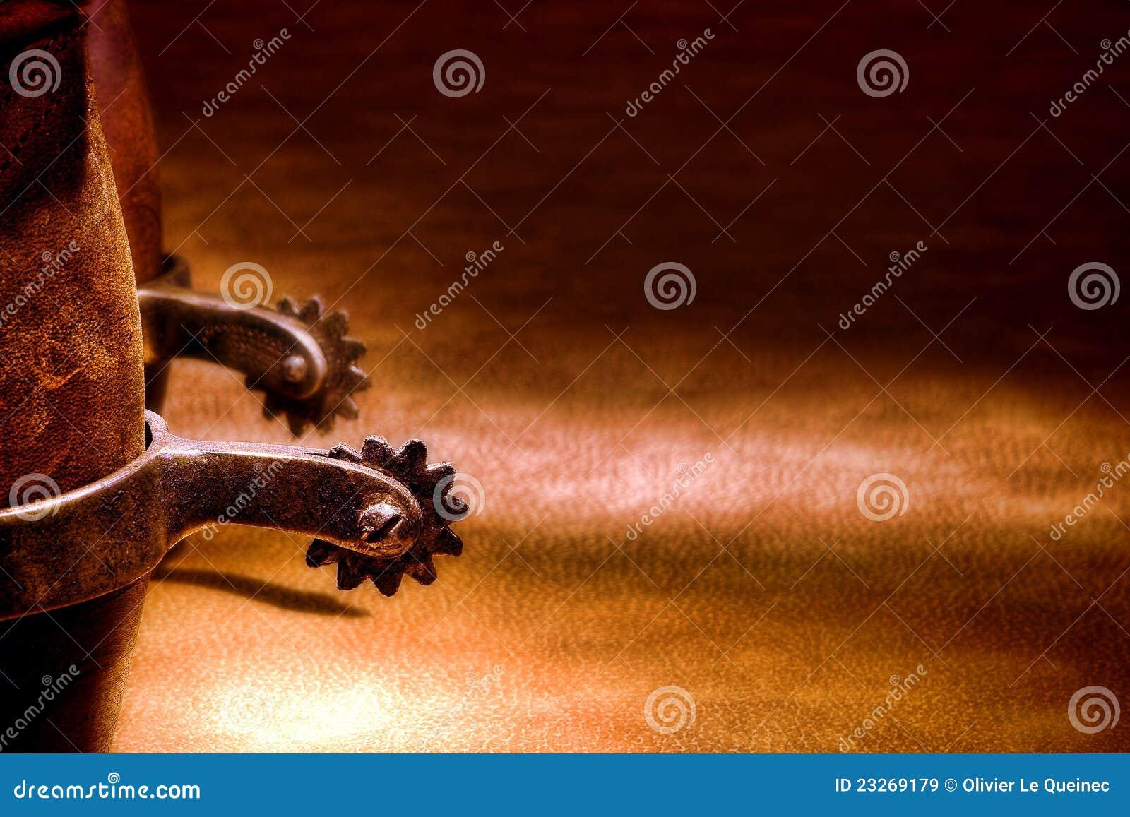 De Amerikaanse Laarzen van de Cowboy van de Rodeo van het Westen met het Berijden van Aansporingen