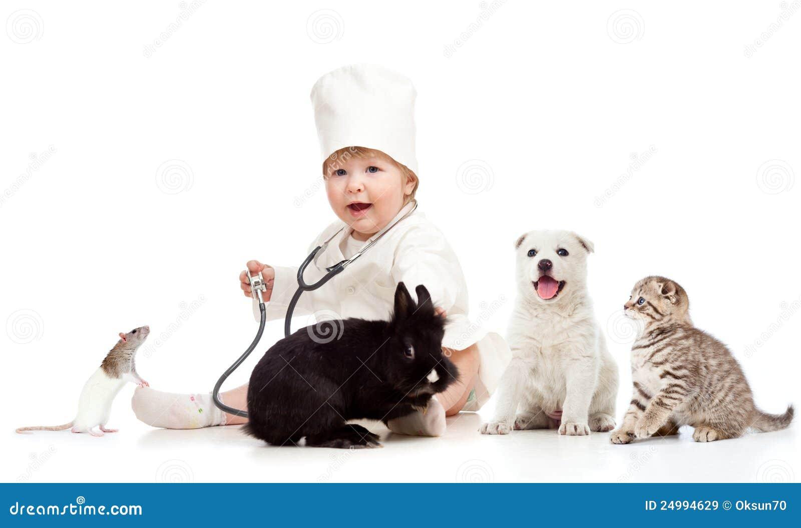 De arts die van het jonge geitje huisdierenhond, kat, konijntje en rat onderzoekt