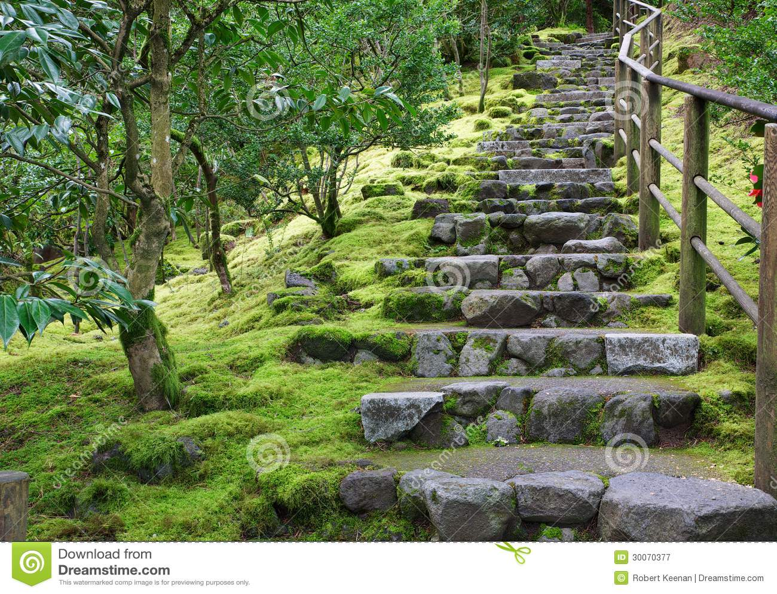 De aziatische trap van de steen van de tuin stock afbeelding afbeelding 30070377 - Scale da giardino ...