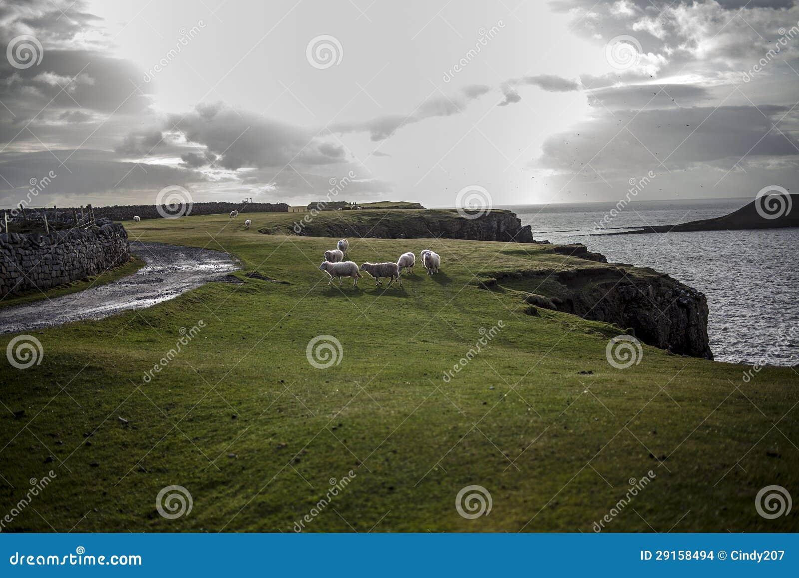 De Baai van Swansea