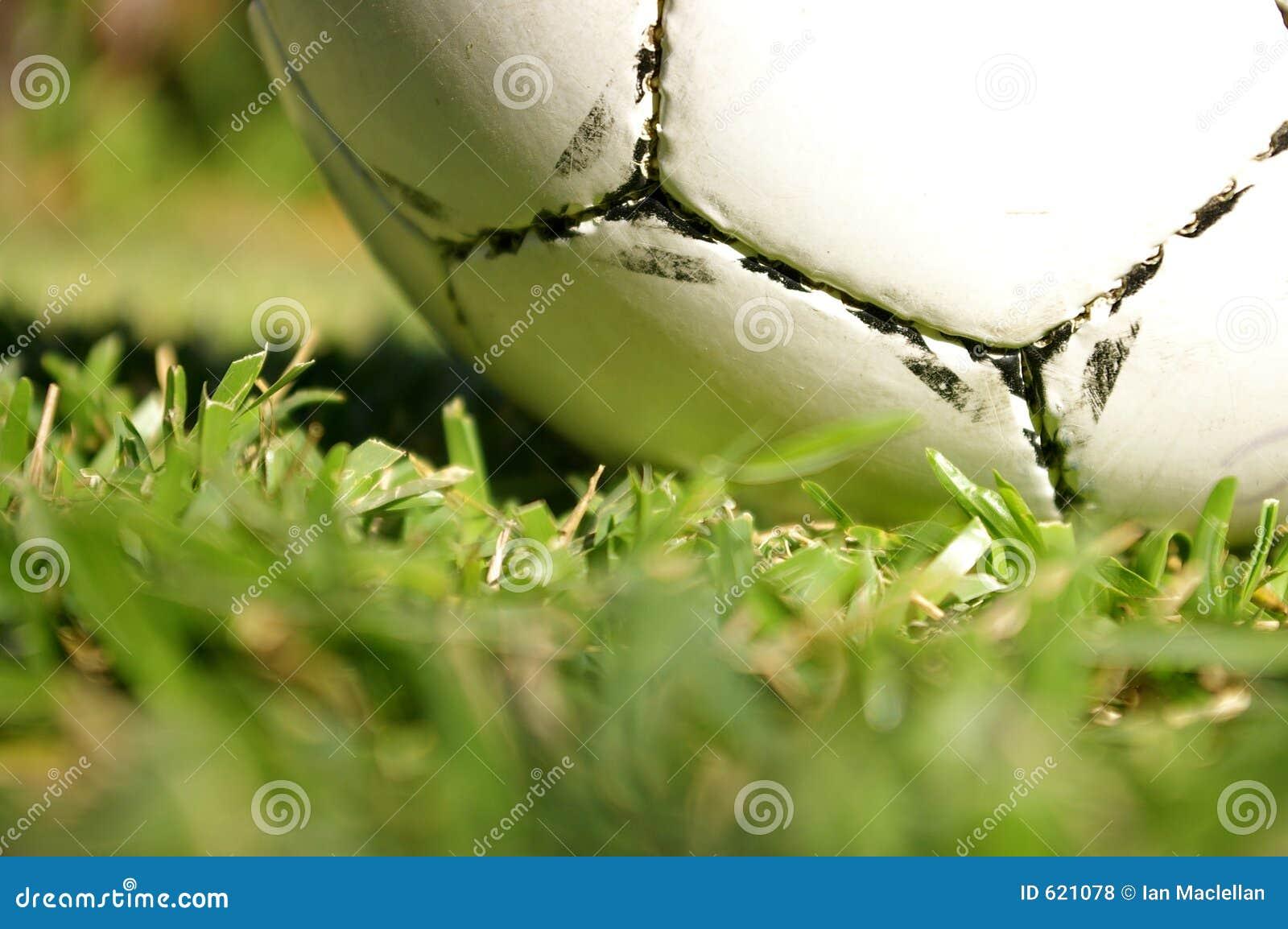 De bal van het voetbal op gras