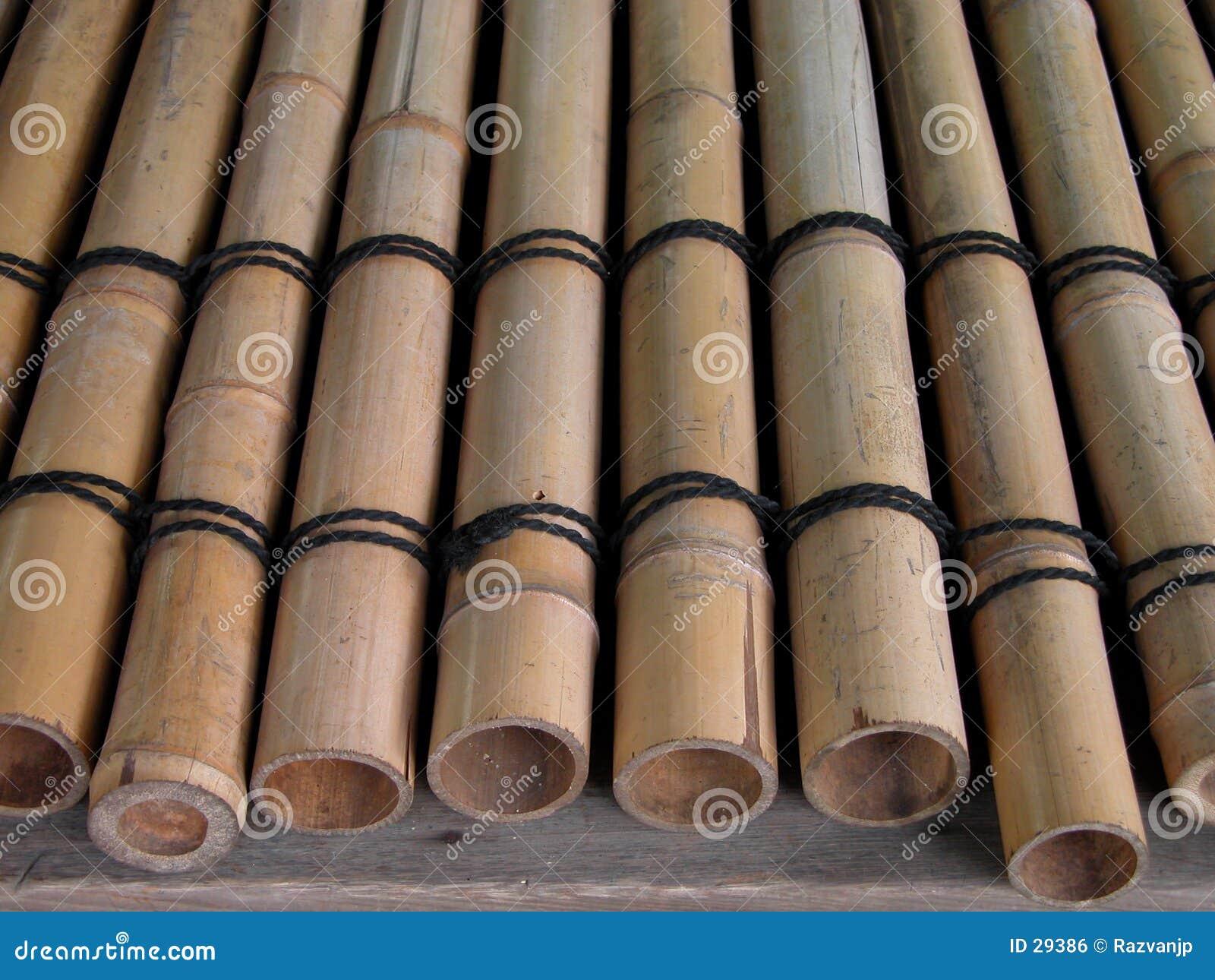 De balken van het bamboe