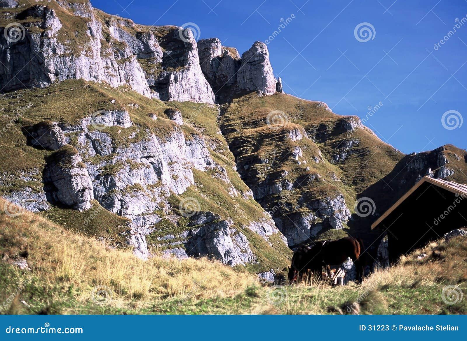 De berg van Caraiman in Bucegi