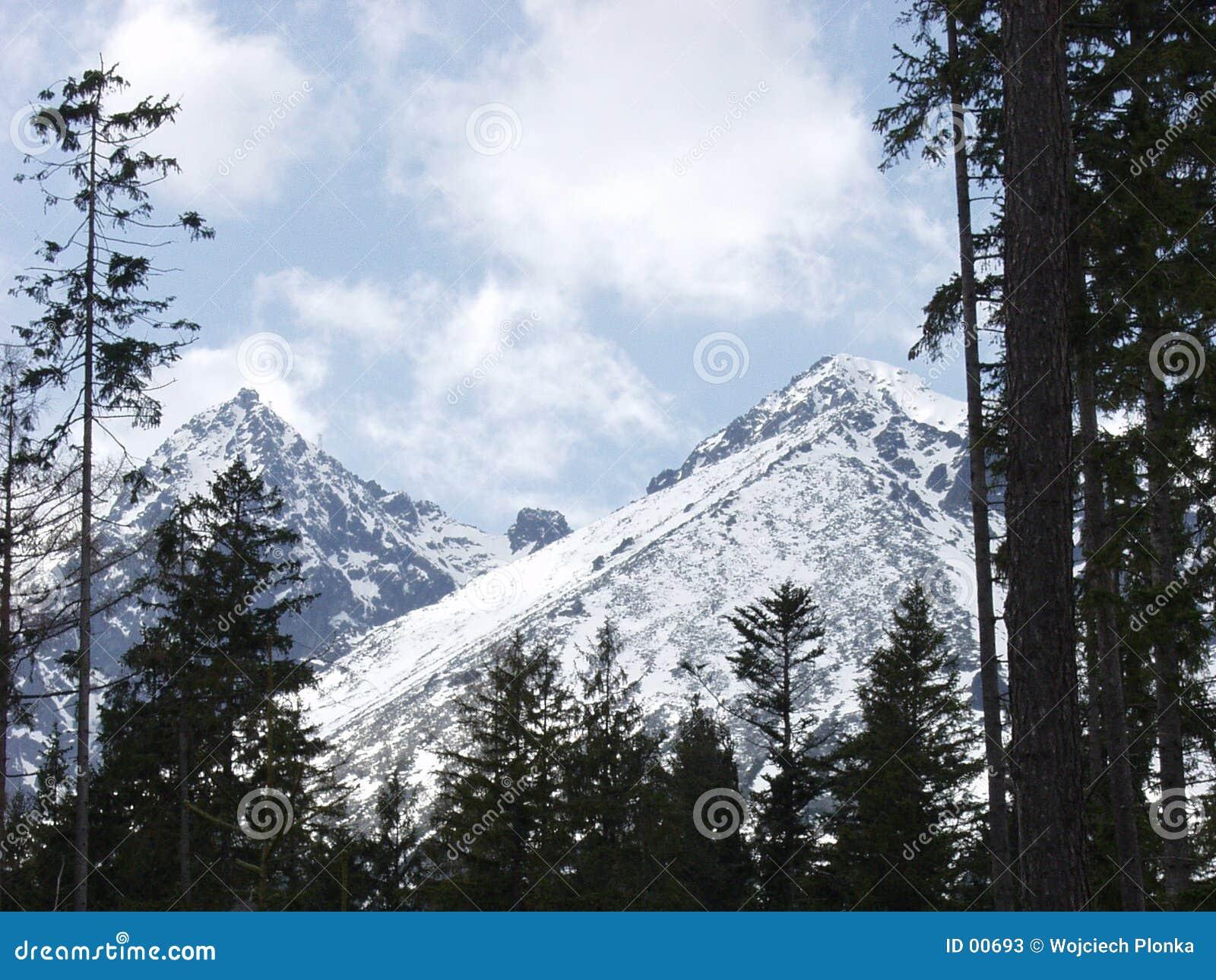 De berg van Lomnica