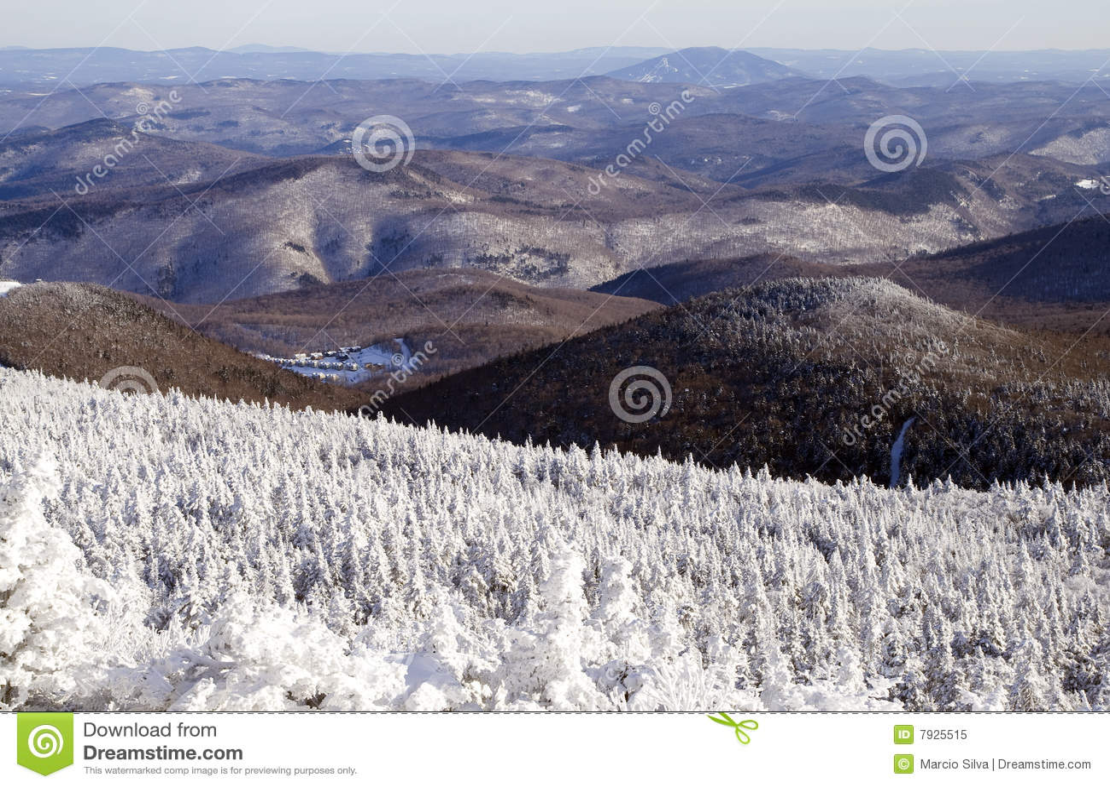 De Bergen van Vermont