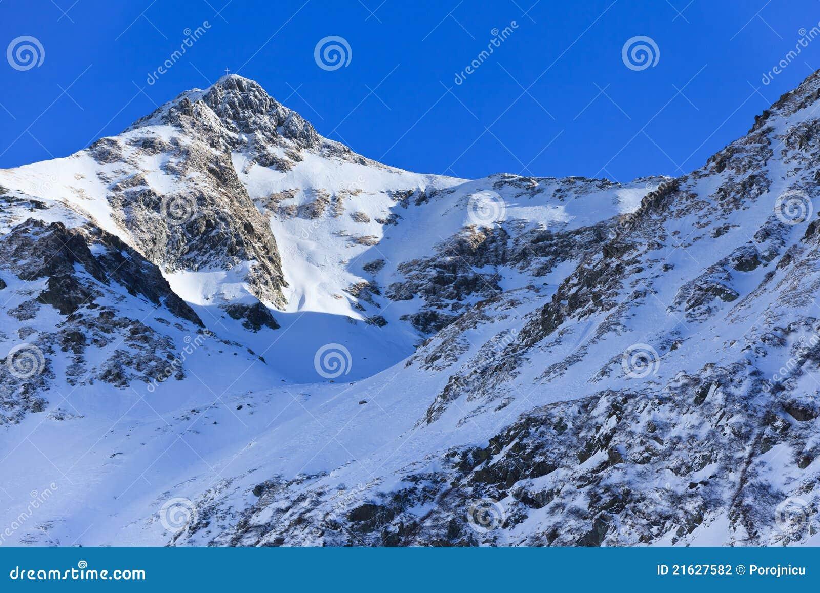 De berglandschap van de winter