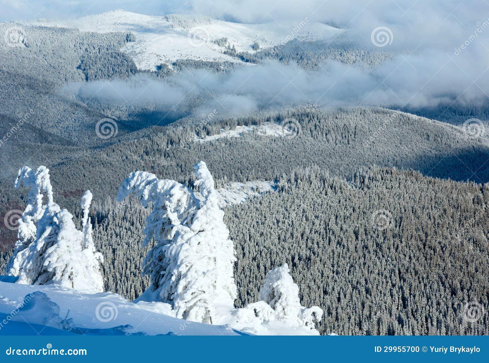 De berglandschap van de winter met sneeuwbomen
