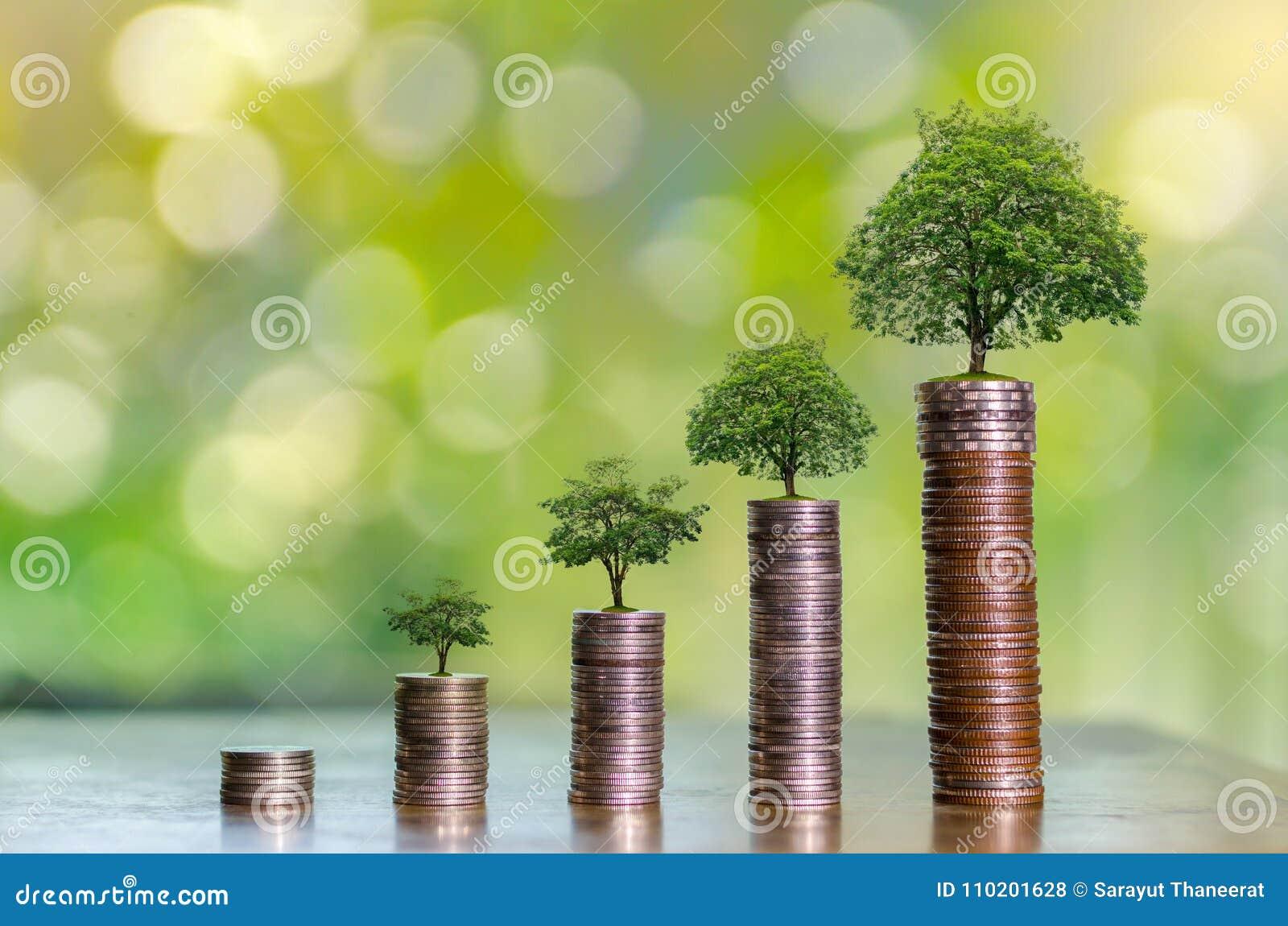 De Besparingsgeld van de geldgroei Het hogere getoonde concept van boommuntstukken het kweken van zaken