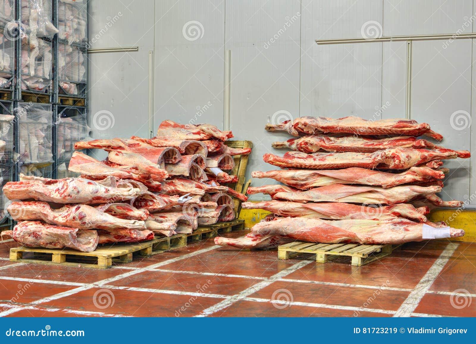 De bevroren rundvleeskarkassen worden gestapeld op pallets voor koude opslag