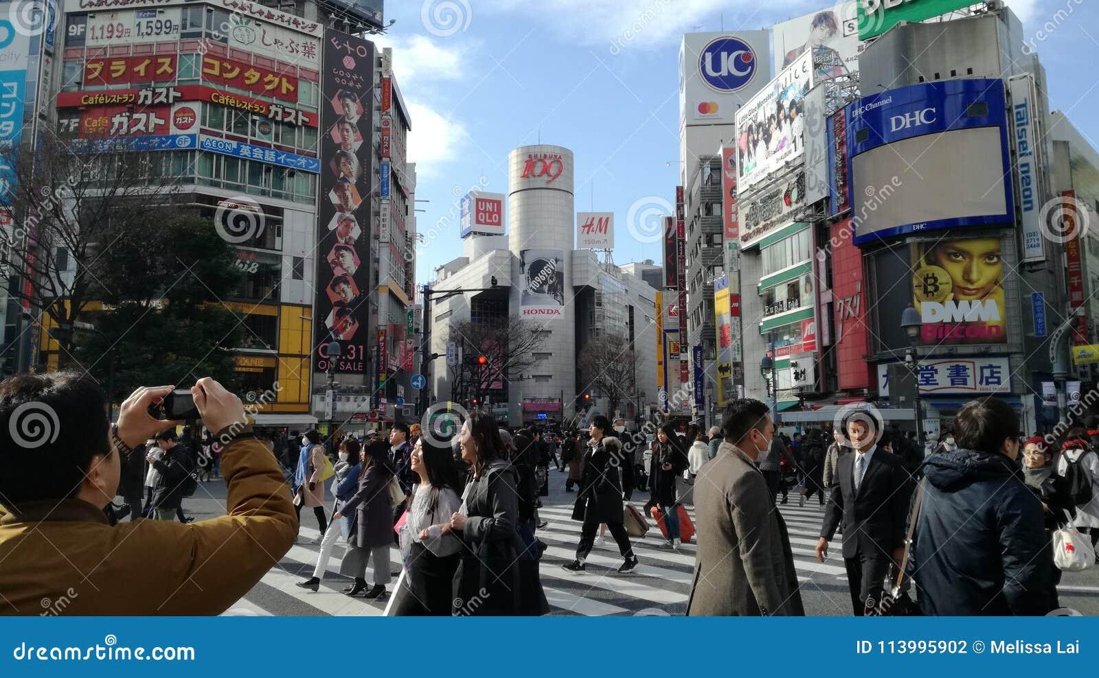 De Bezige Stad van Tokyo