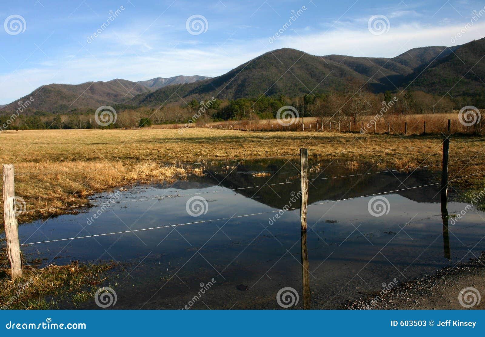 De bezinningen van het water