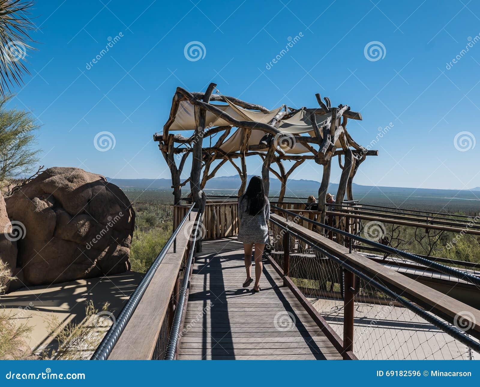 De bezoekers genieten van in de schaduw gesteld observatieplatform overziend woestijn