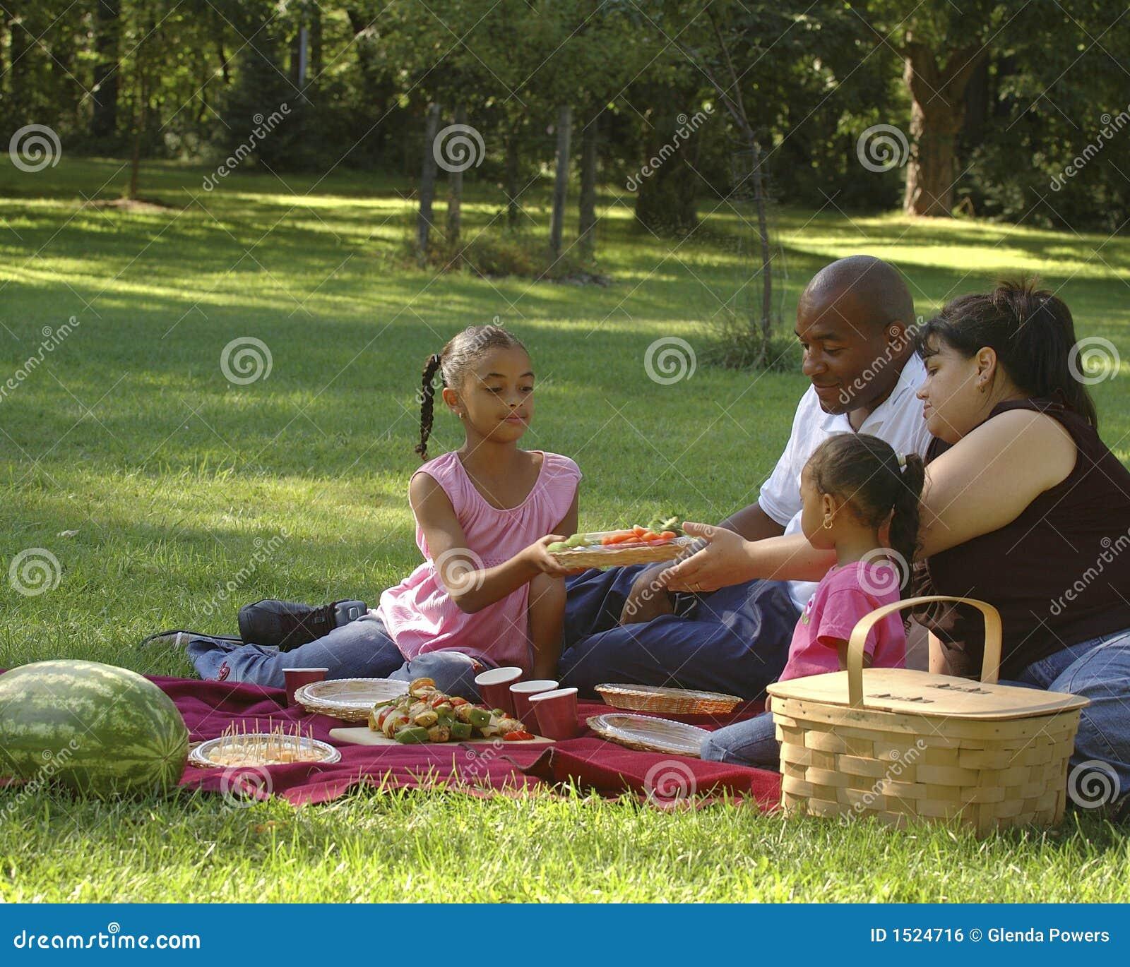 De bi-rassen Picknick van de Familie