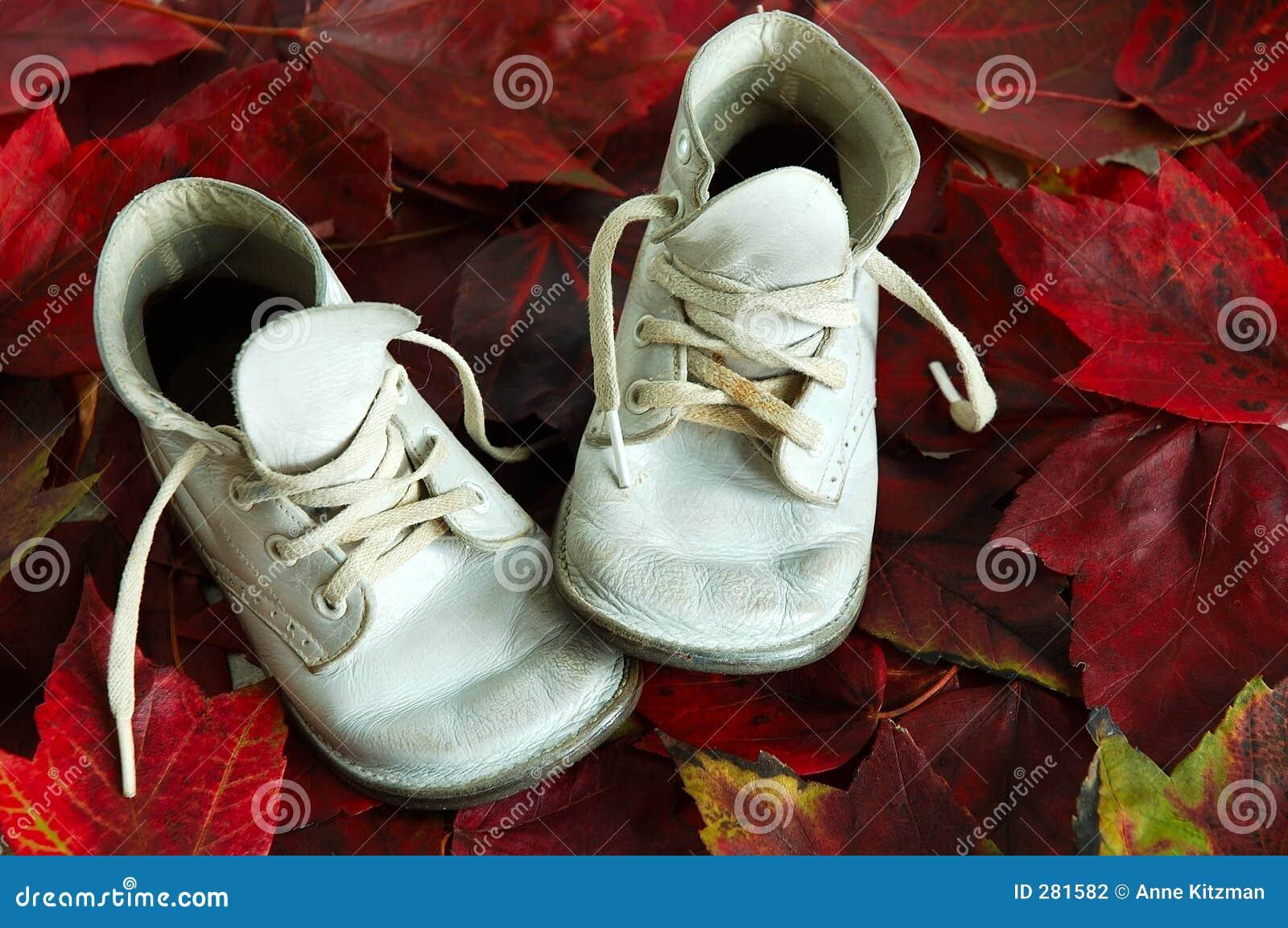 De Bladeren van de Daling van de Schoenen van de baby