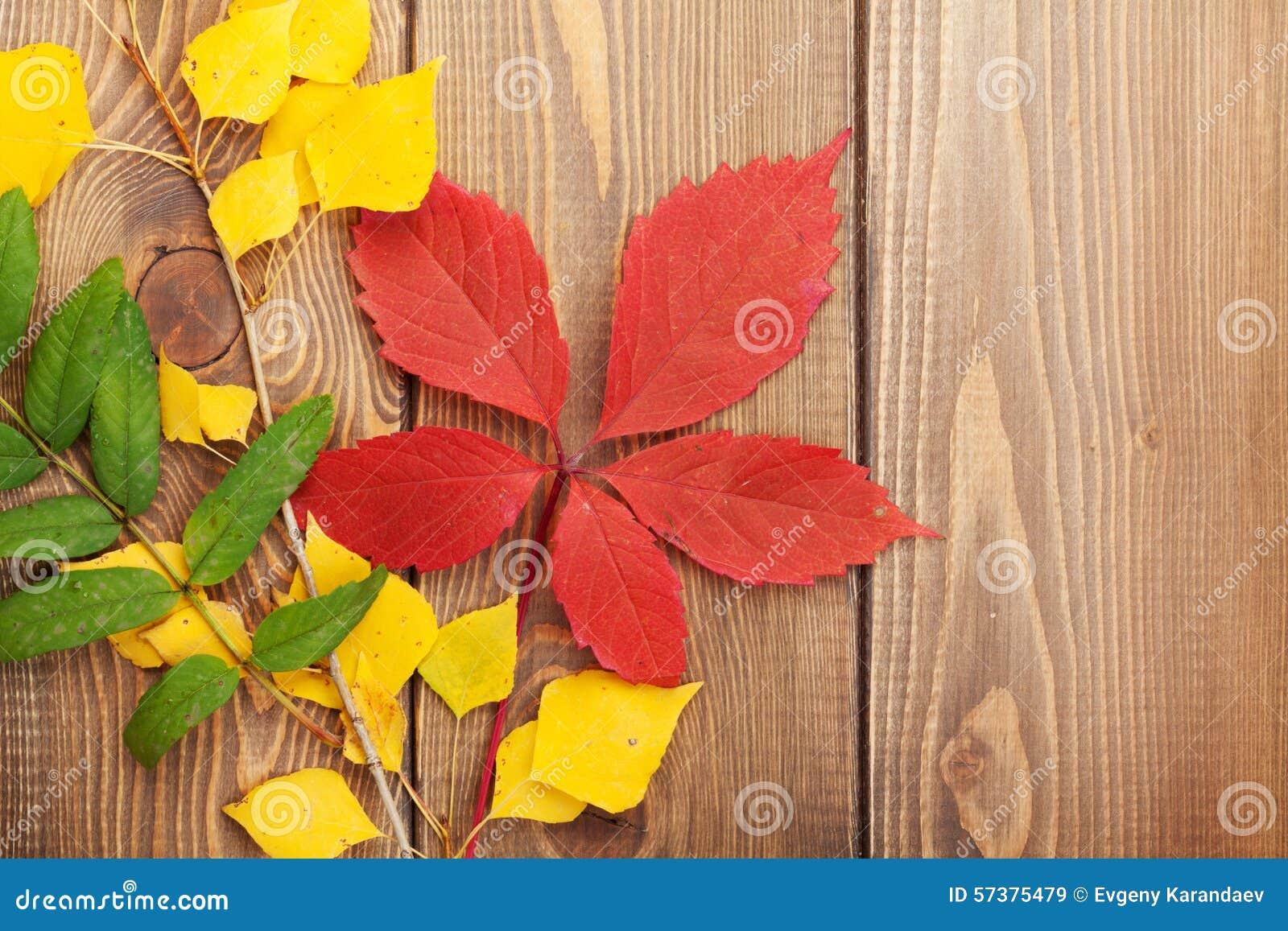 De Bladeren van de herfst over houten achtergrond