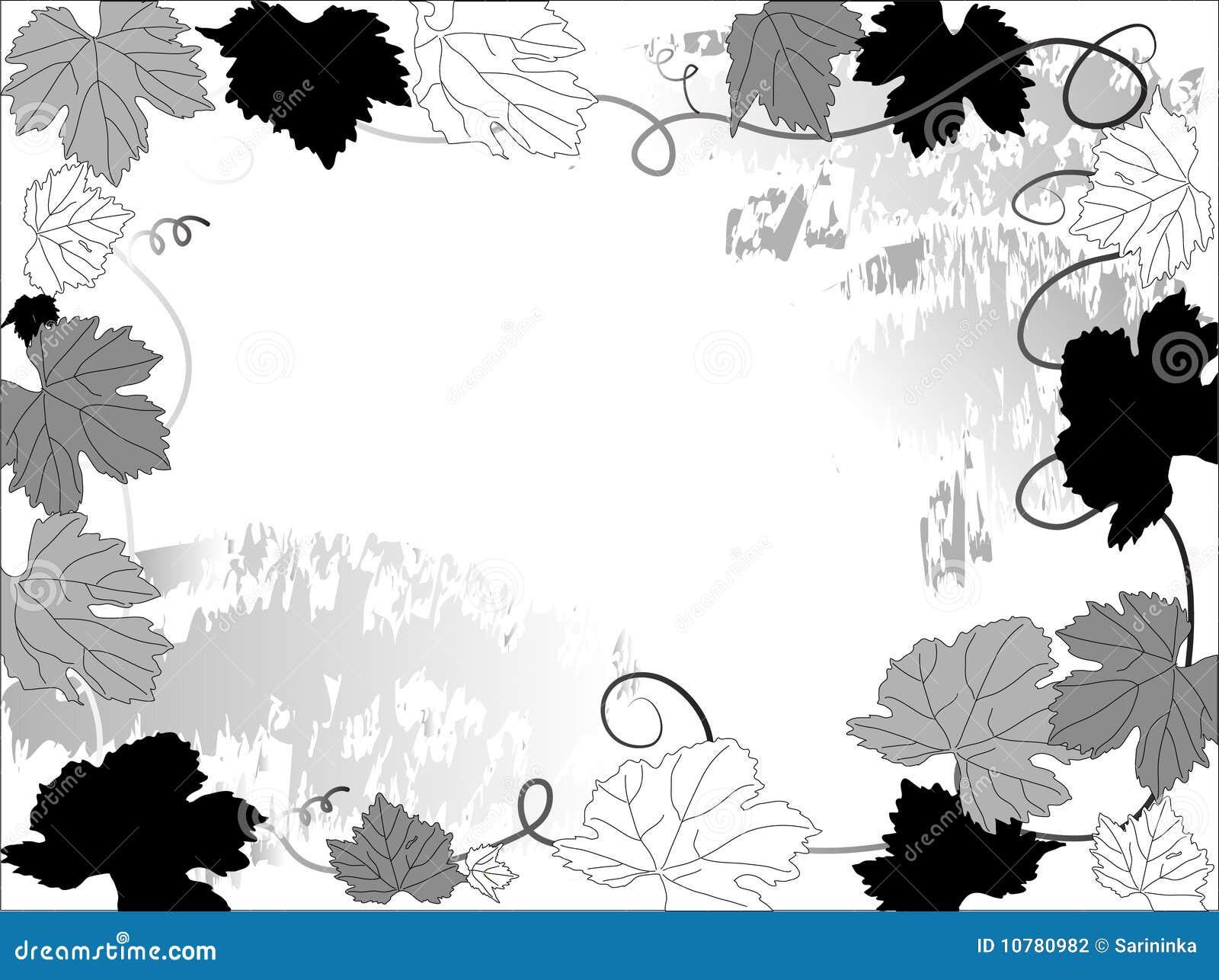 De bladeren van de wijnstok
