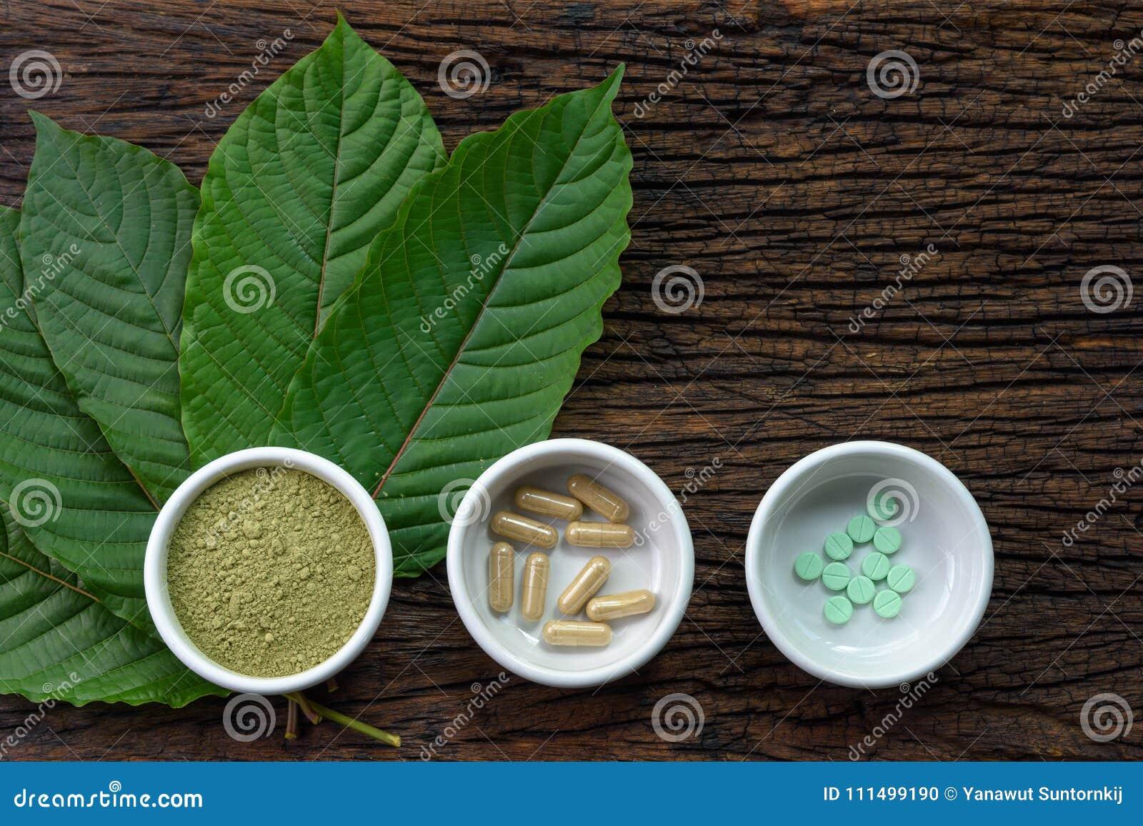 De bladeren van Mitragynaspeciosa kratom met geneeskundeproducten in poeder, capsules en tablet in witte ceramische kom met houte