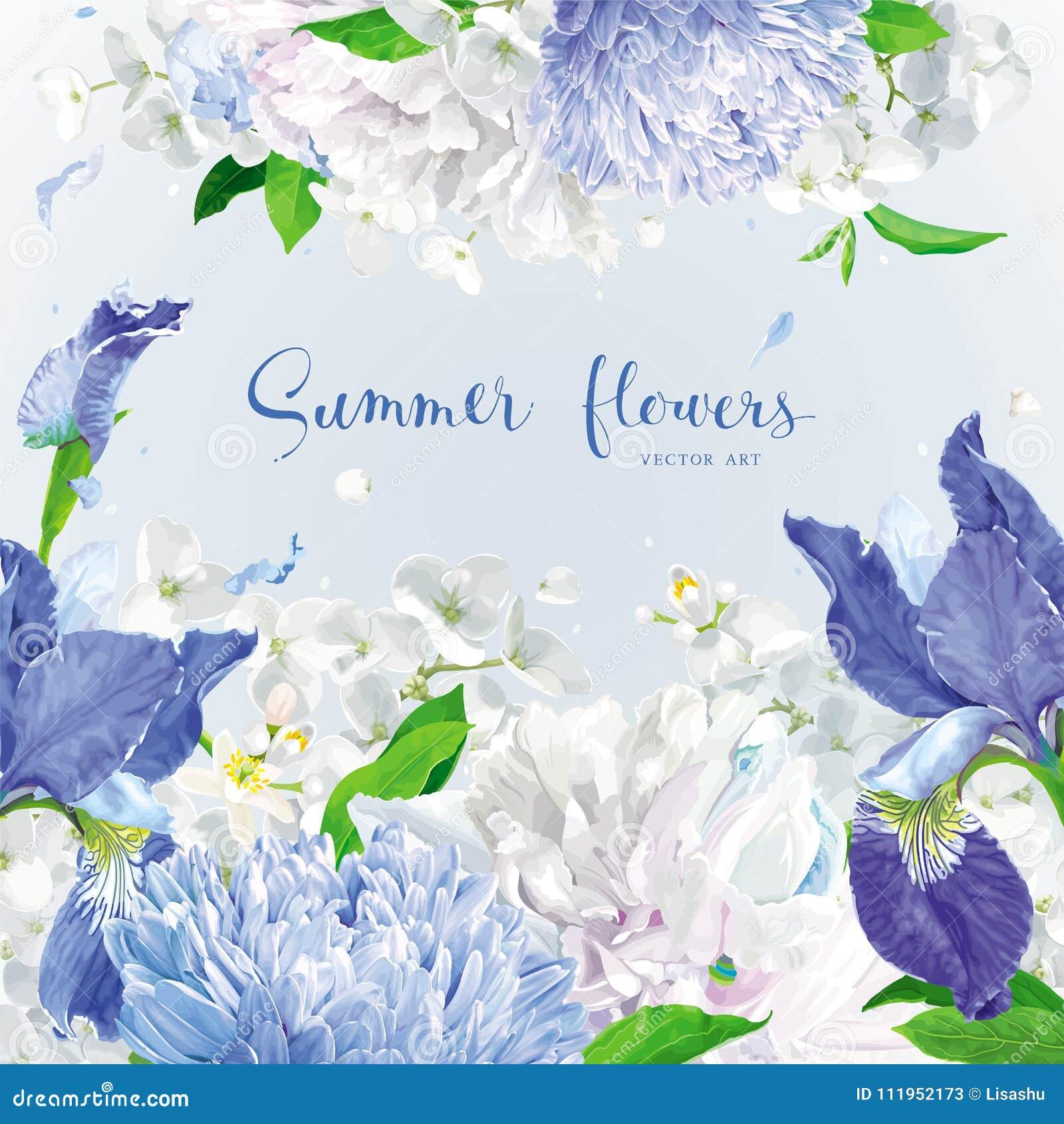 De blauwe achtergrond van de zomerbloemen