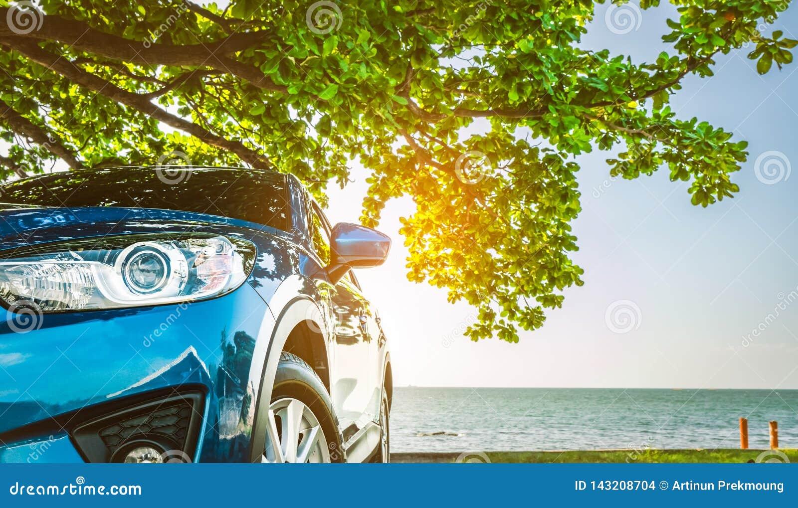 De blauwe die auto van sportsuv door het tropische overzees onder parapluboom wordt geparkeerd De zomervakantie bij het strand De