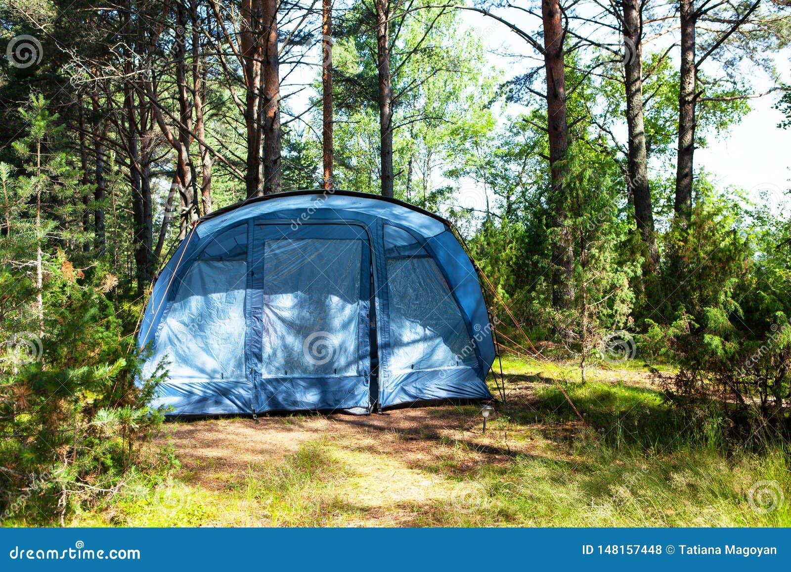 De blauwe grote vierzitter het kamperen tenttribunes in schaduw van pijnboombos, weer is zonnig De zomerkamp, rust, stijging Fron