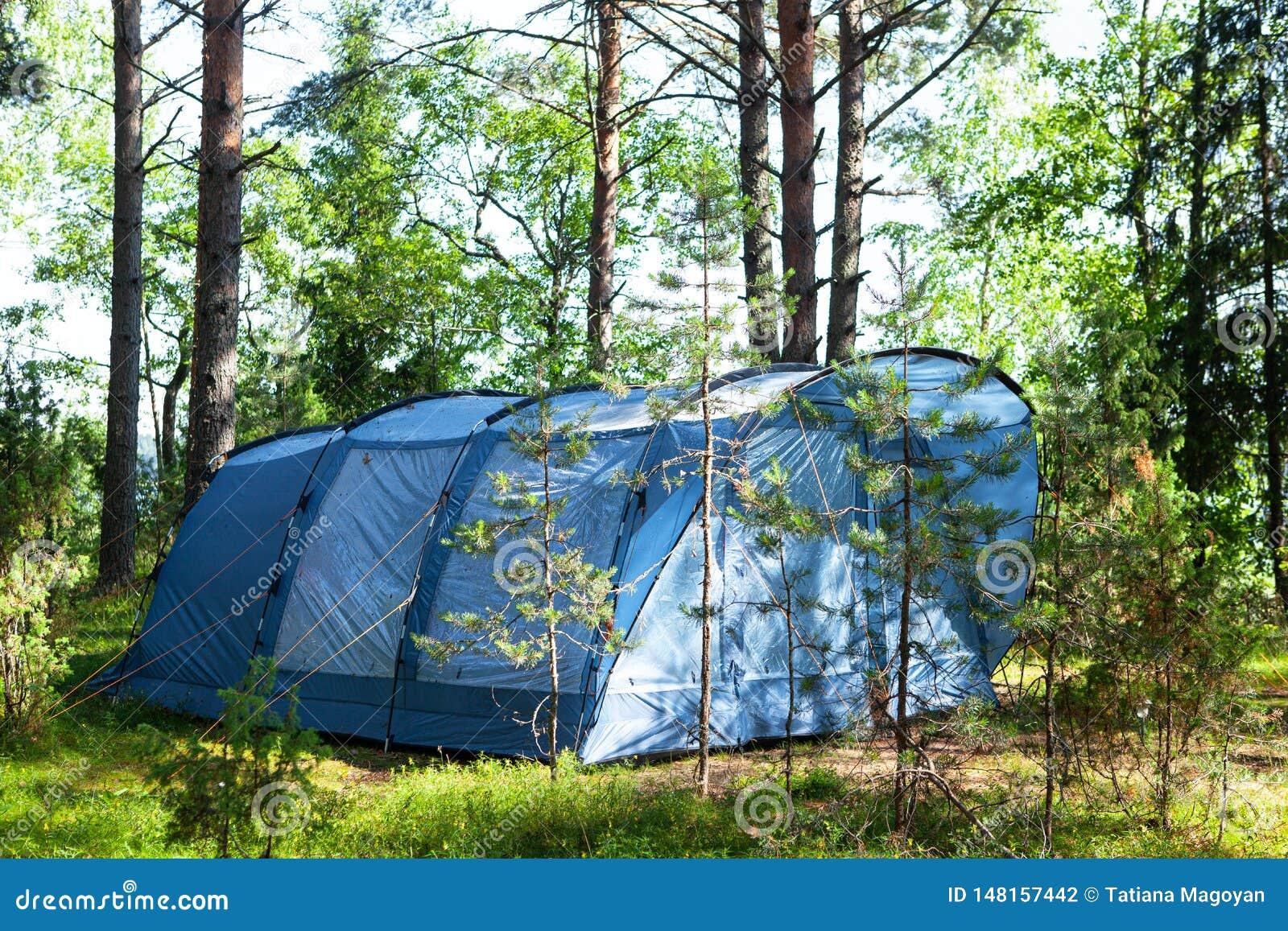 De blauwe grote vierzitter het kamperen tenttribunes in schaduw van pijnboombos, weer is zonnig De zomerkamp, rust, stijging