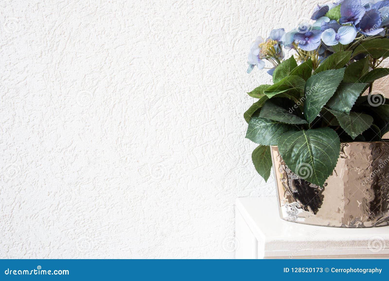De blauwe Hydrangea hortensiabloemen in een pot op een witte achtergrond op houten schorten op