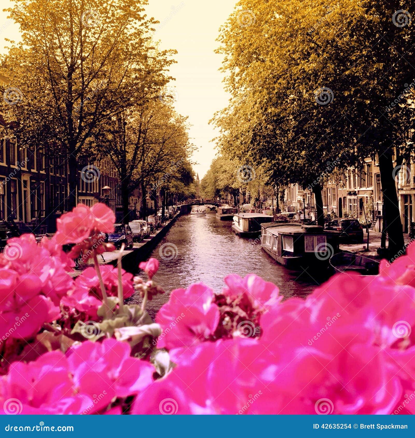 De bloemen van Amsterdam