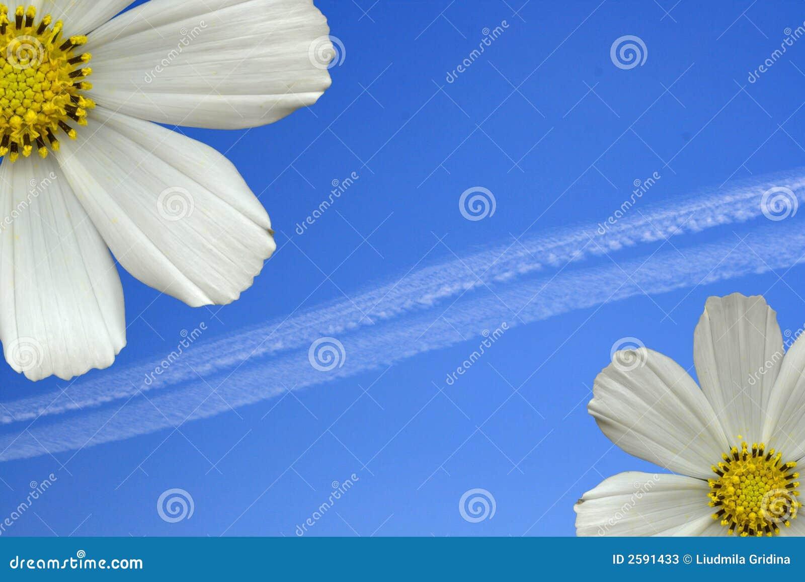 De bloemen van de hemel
