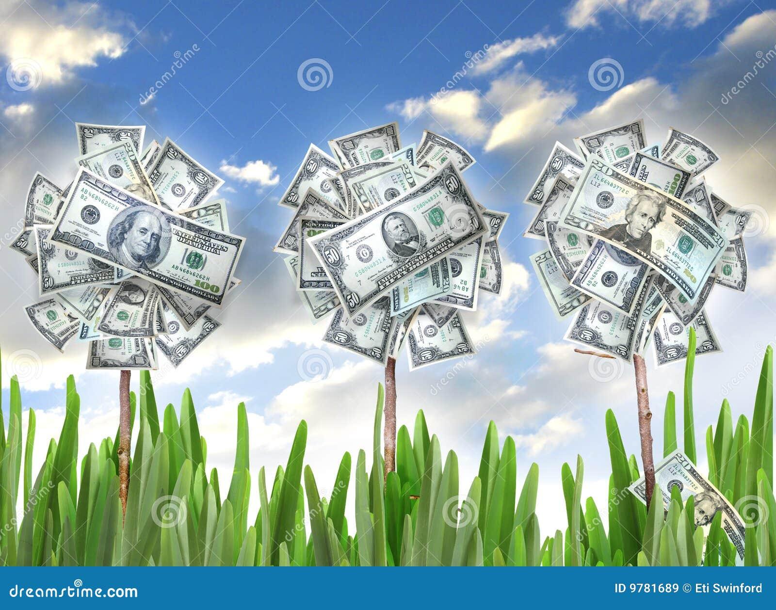 De bloemen van het geld