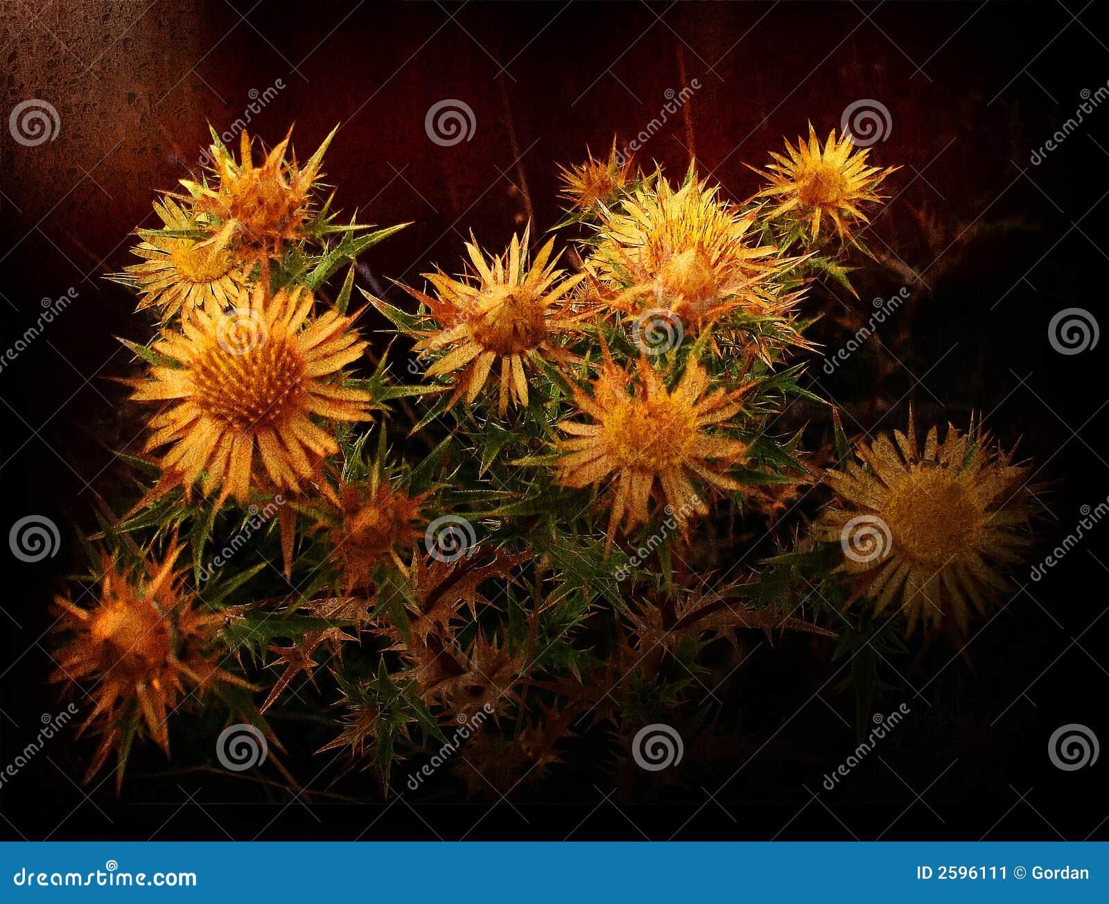 De bloemenachtergrond van Grunge