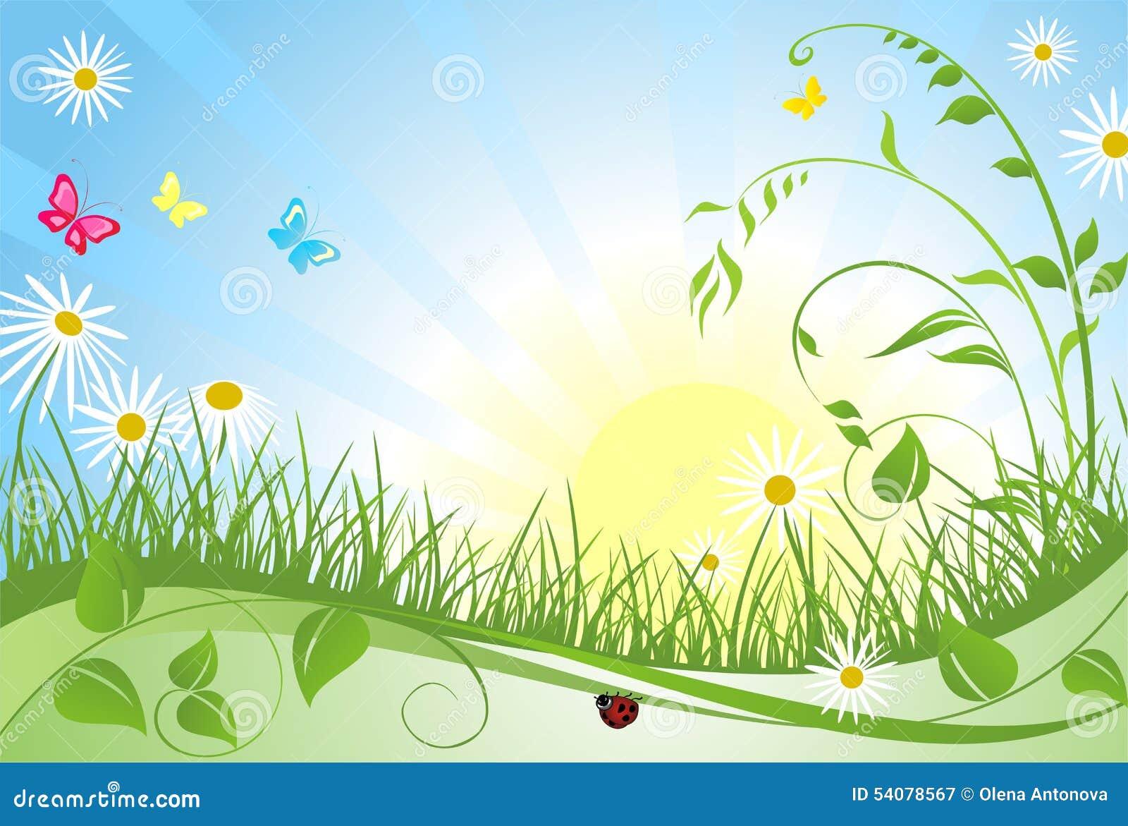 De bloemenkaart van de lente