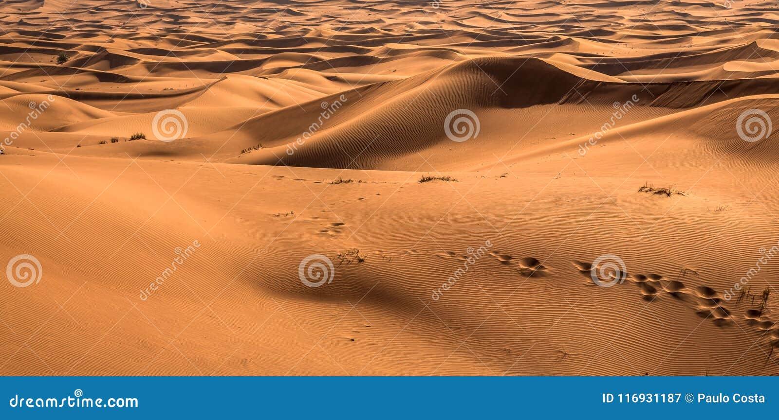 De blootstelling van de woestijnzonsondergang dichtbij Doubai, Verenigde Arabische Emiraten