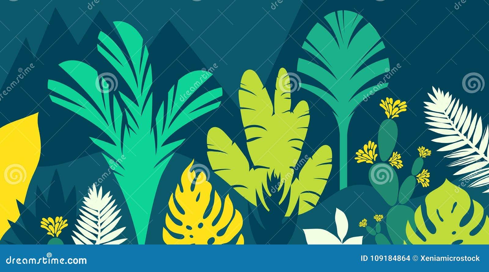 De bomen zijn breedbladige tropisch, varens Het landschap van de berg Vlakke stijl Behoud van het milieu, bossen park, openlucht