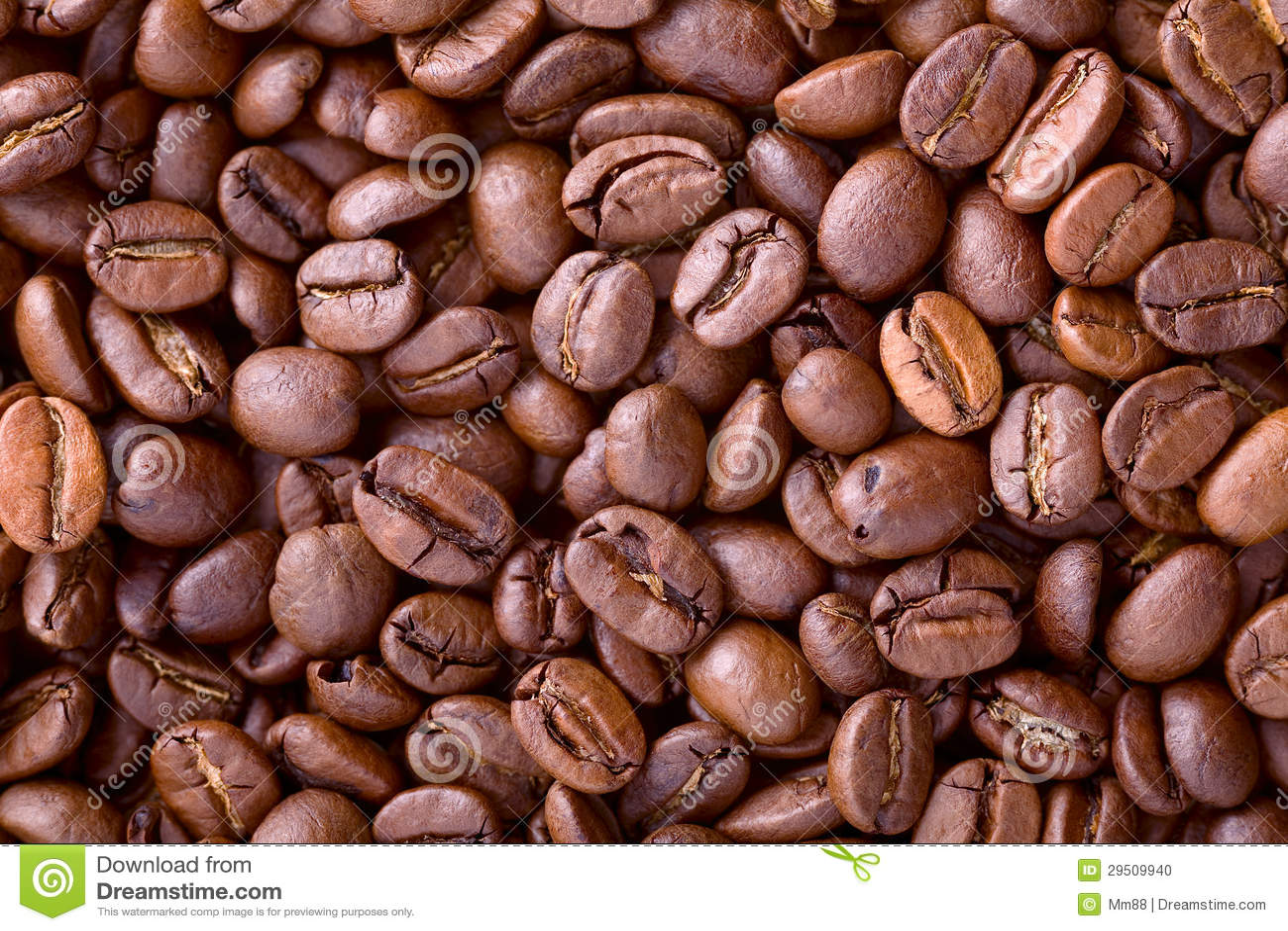 De bonenachtergrond van de koffie