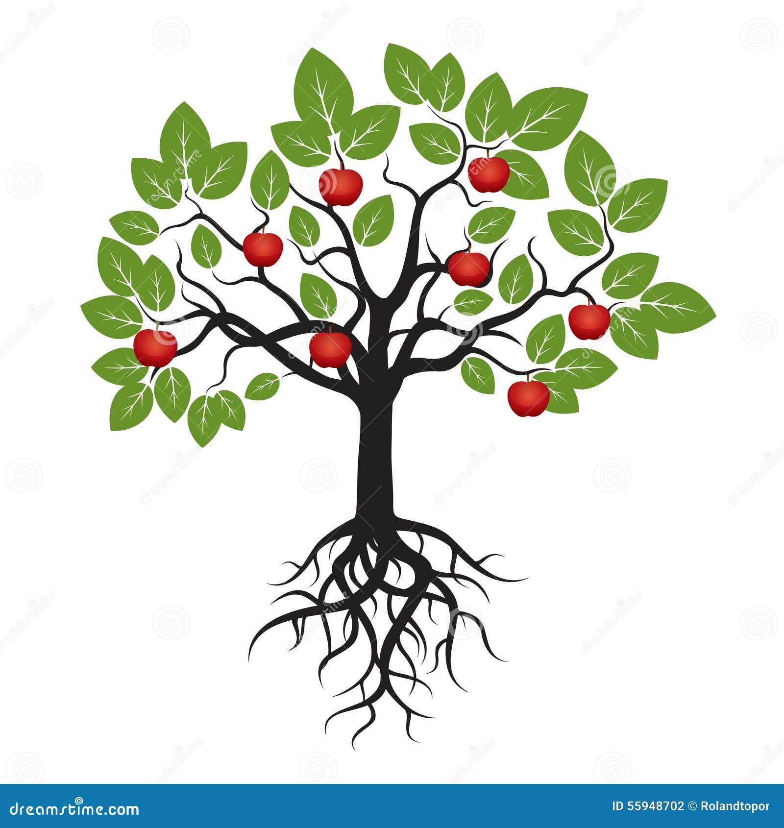 De boom met Groen doorbladert, Wortels en Rood Apple