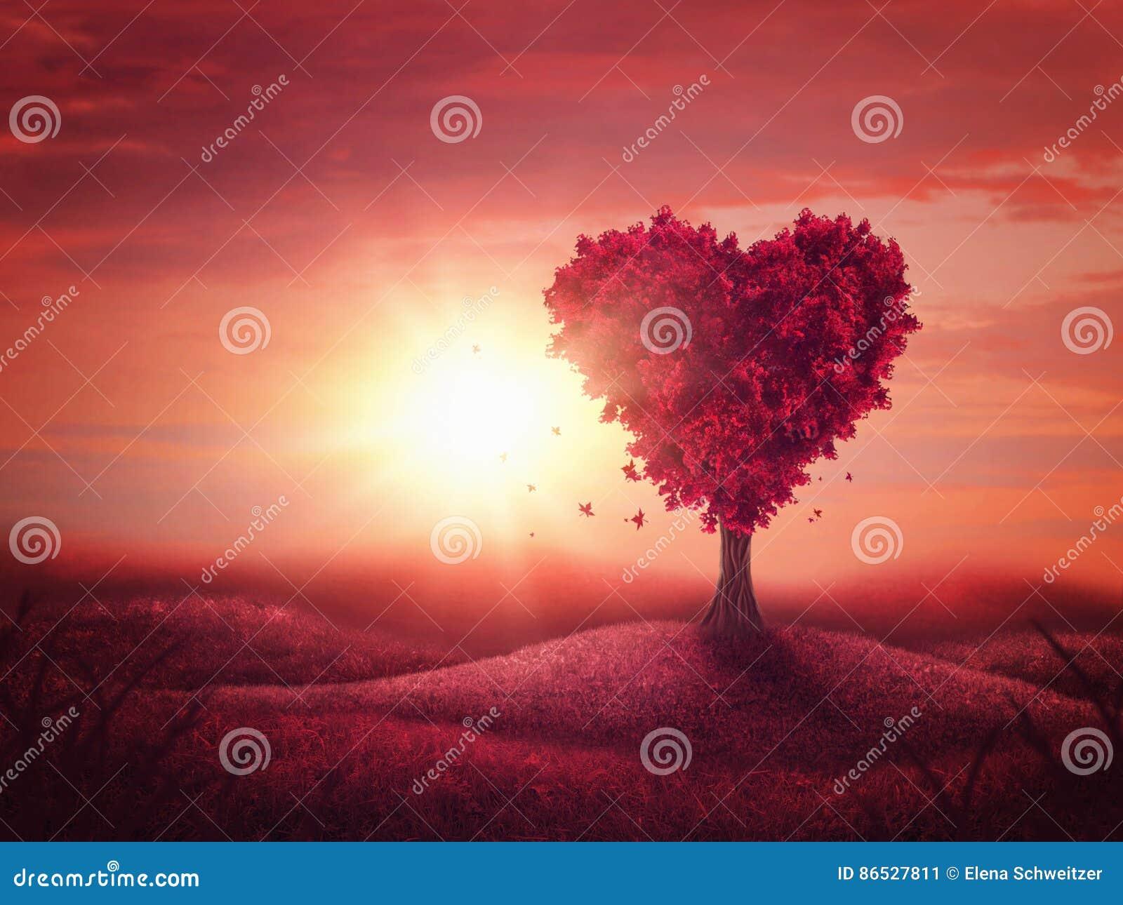 De Boom van de hartliefde