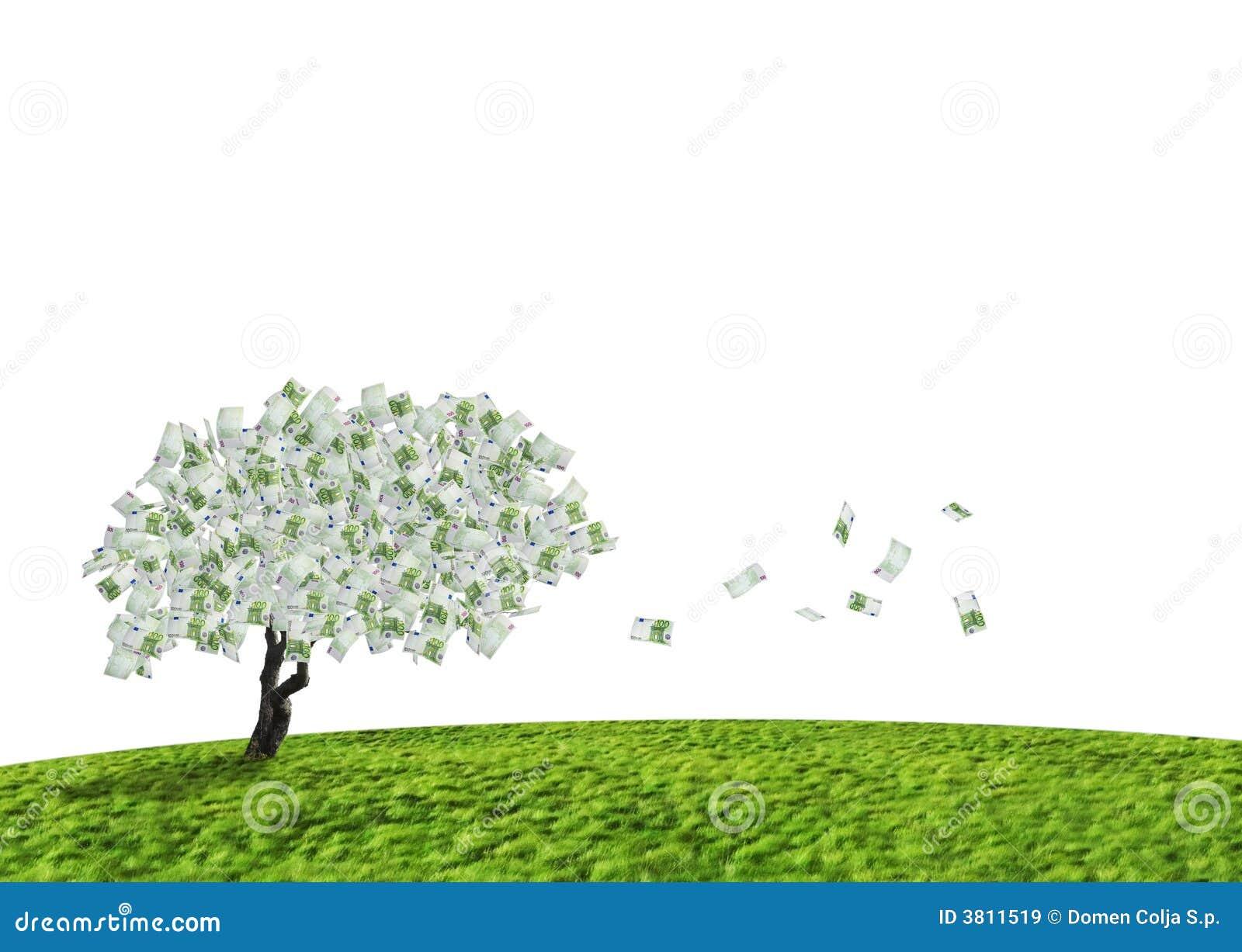 De boom van het contante geld