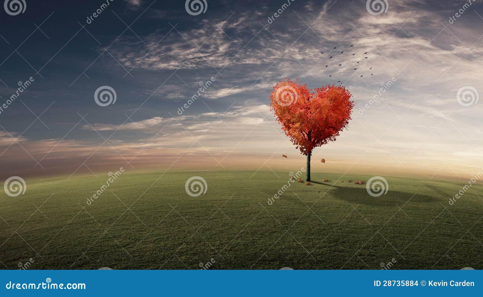 De Boom van het hart