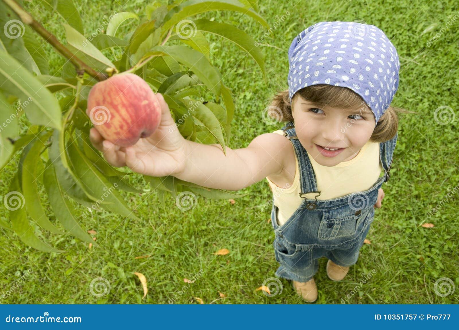 De boomgaard van de perzik