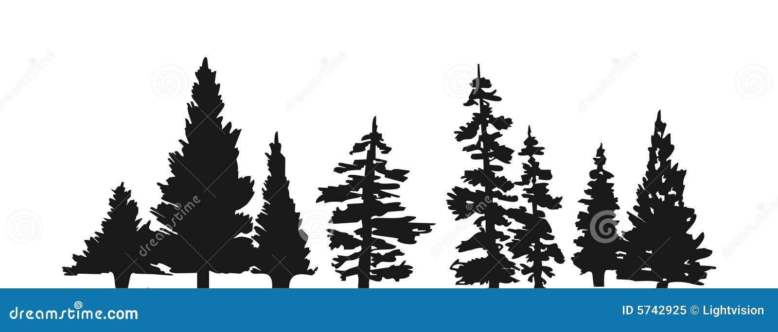 De boomsilhouet van de pijnboom