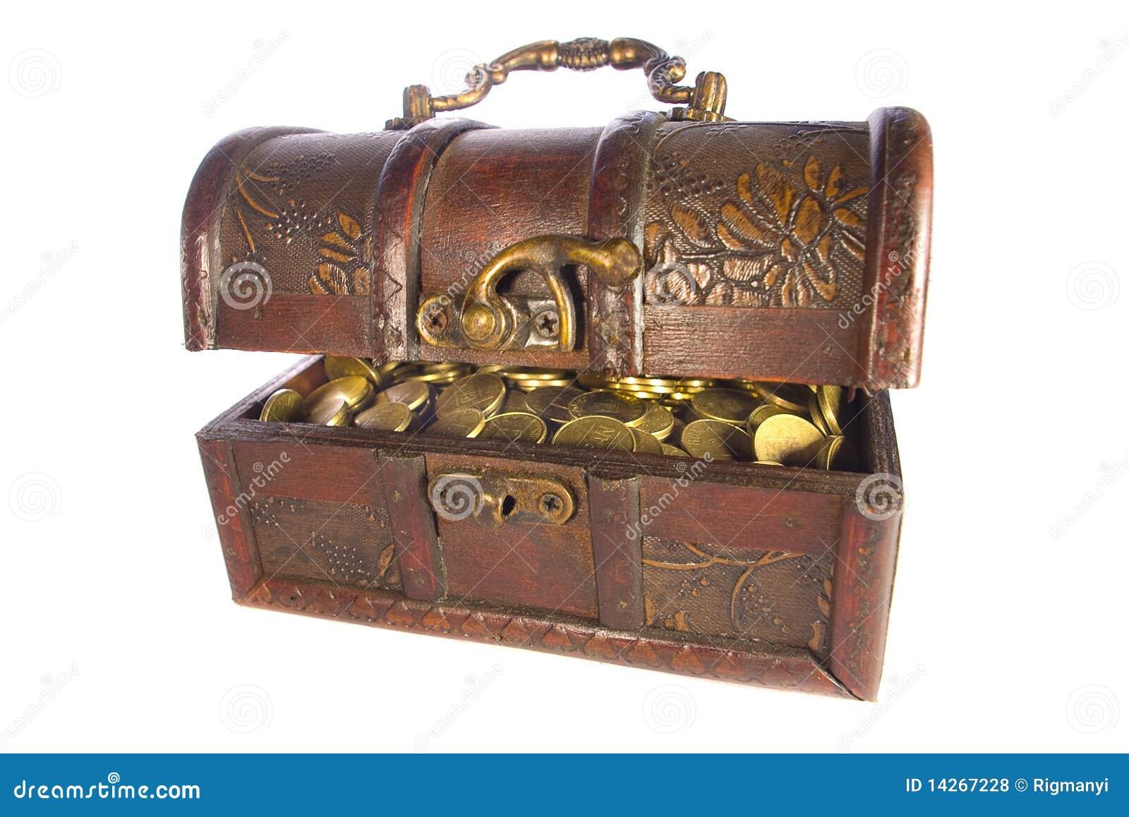 De borst van de schat met gouden geïsoleerdel muntstukken