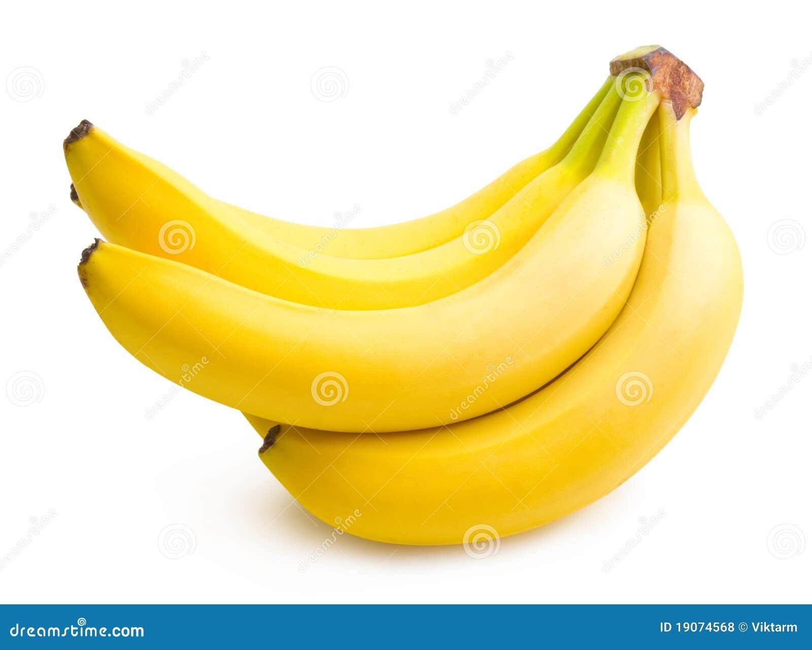 De bos van de banaan