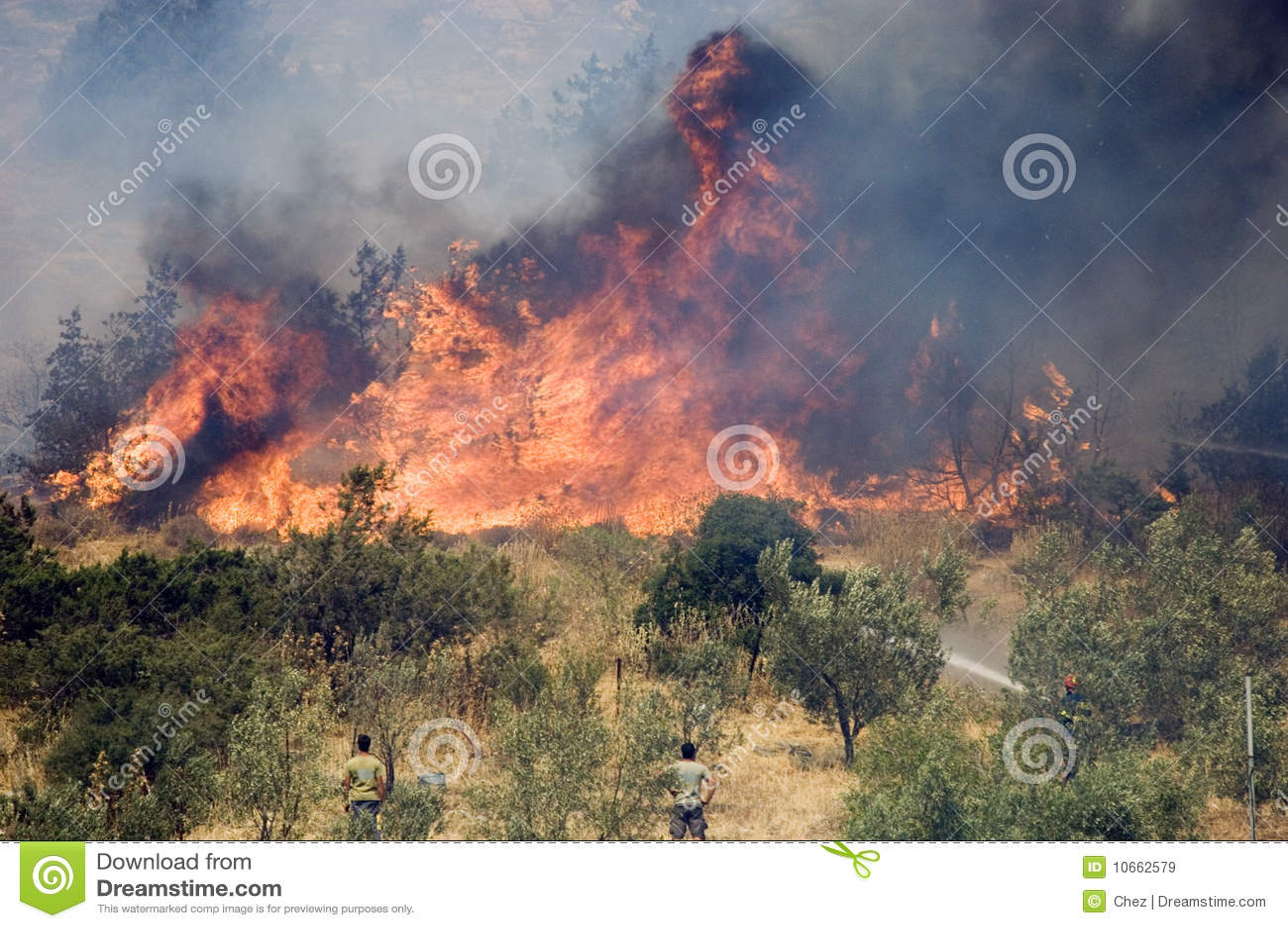 De bosbranden van Athene