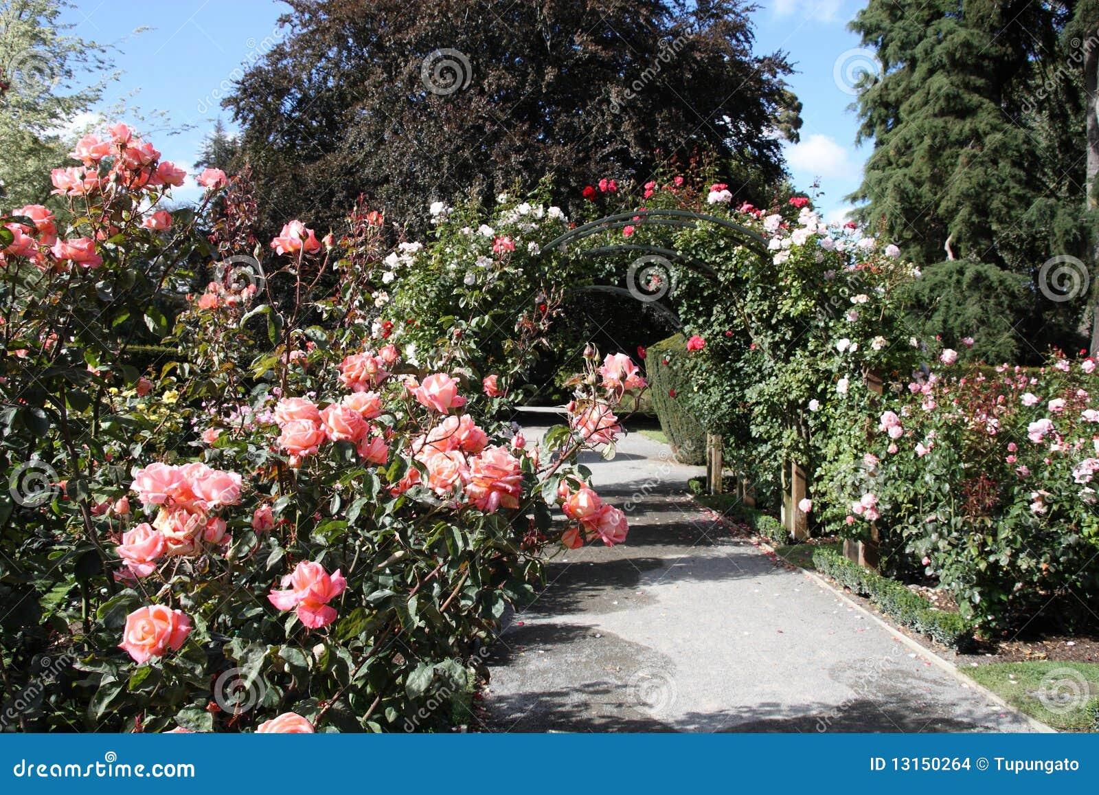 De botanische tuin van Christchurch