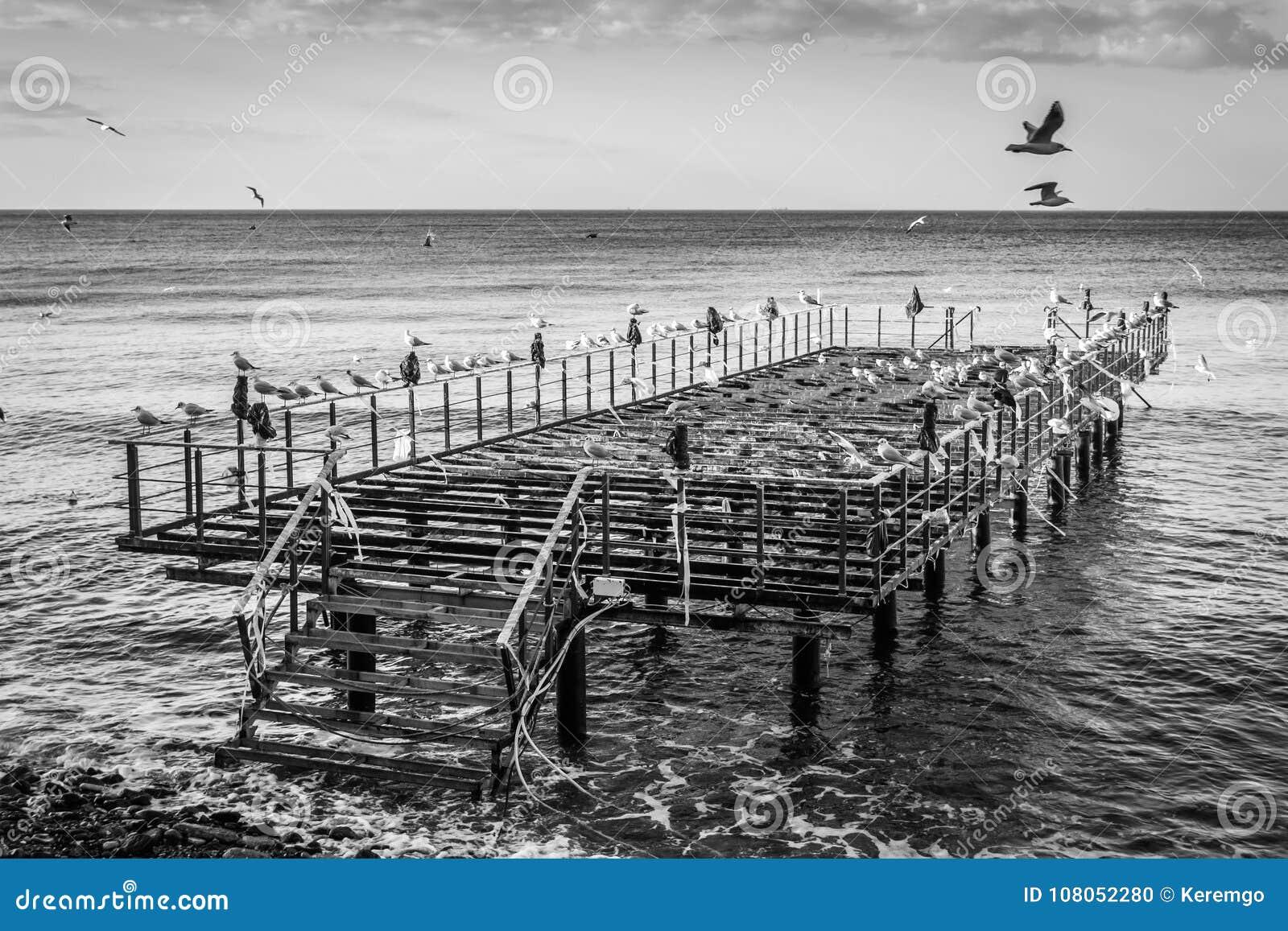 De Bouw Pier On Seaside van het Desolatedstaal